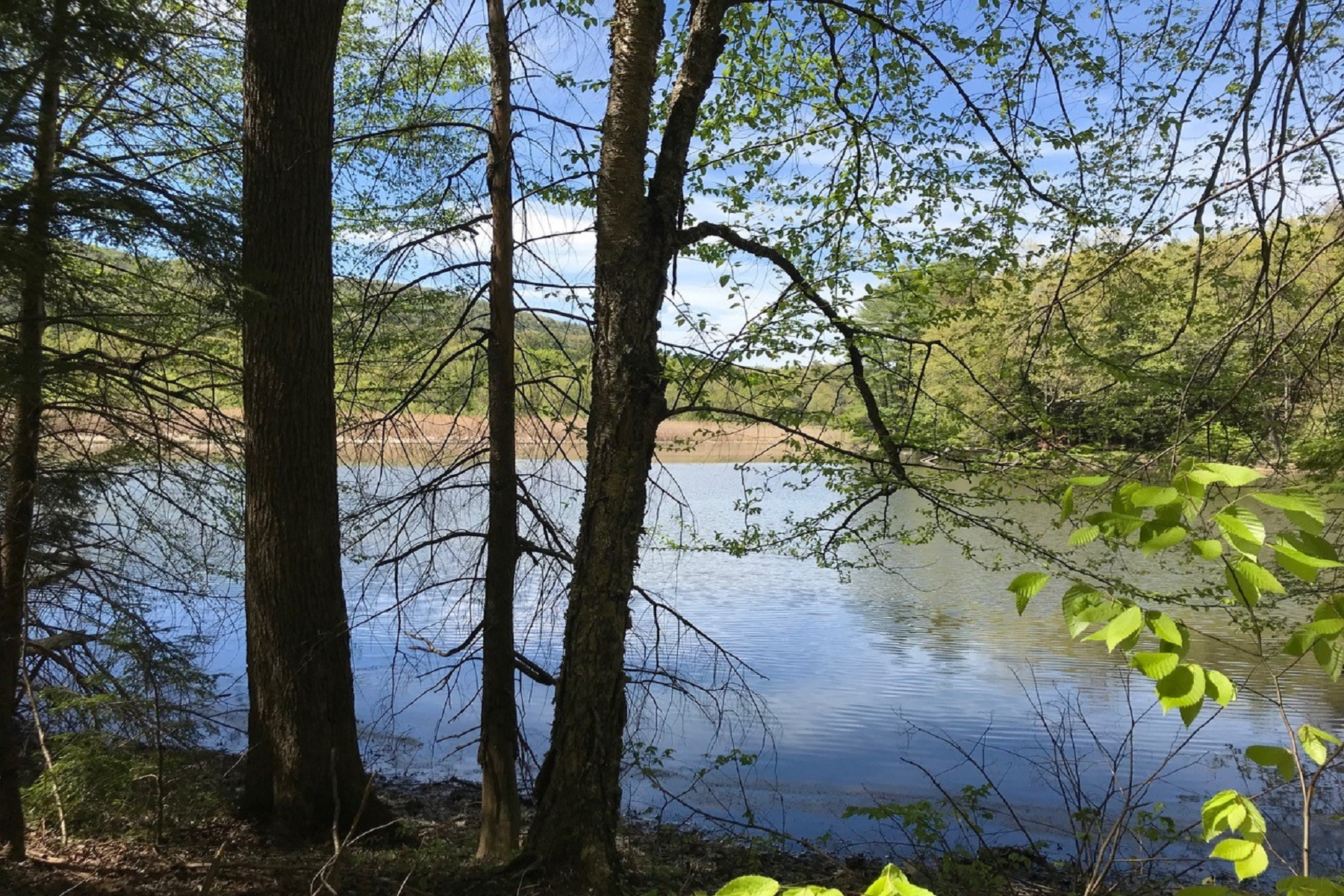 Land for Sale at Amazing Opportunity 324 Old Mill Pond Road Drive Windsor, Vermont 05089 United States