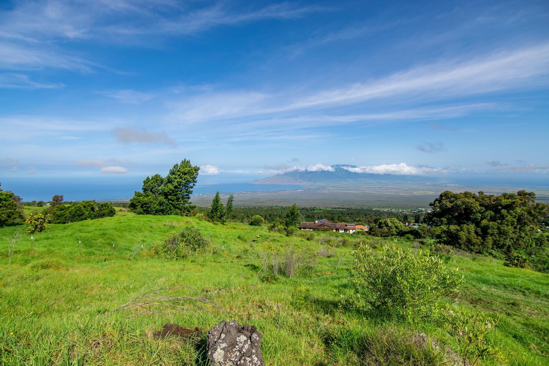 農場 / 牧場 / 種植場 為 出售 在 360 Degree Views from this Prestine Kula Land 0 Maukanani Rd Kula, 夏威夷 96790 美國