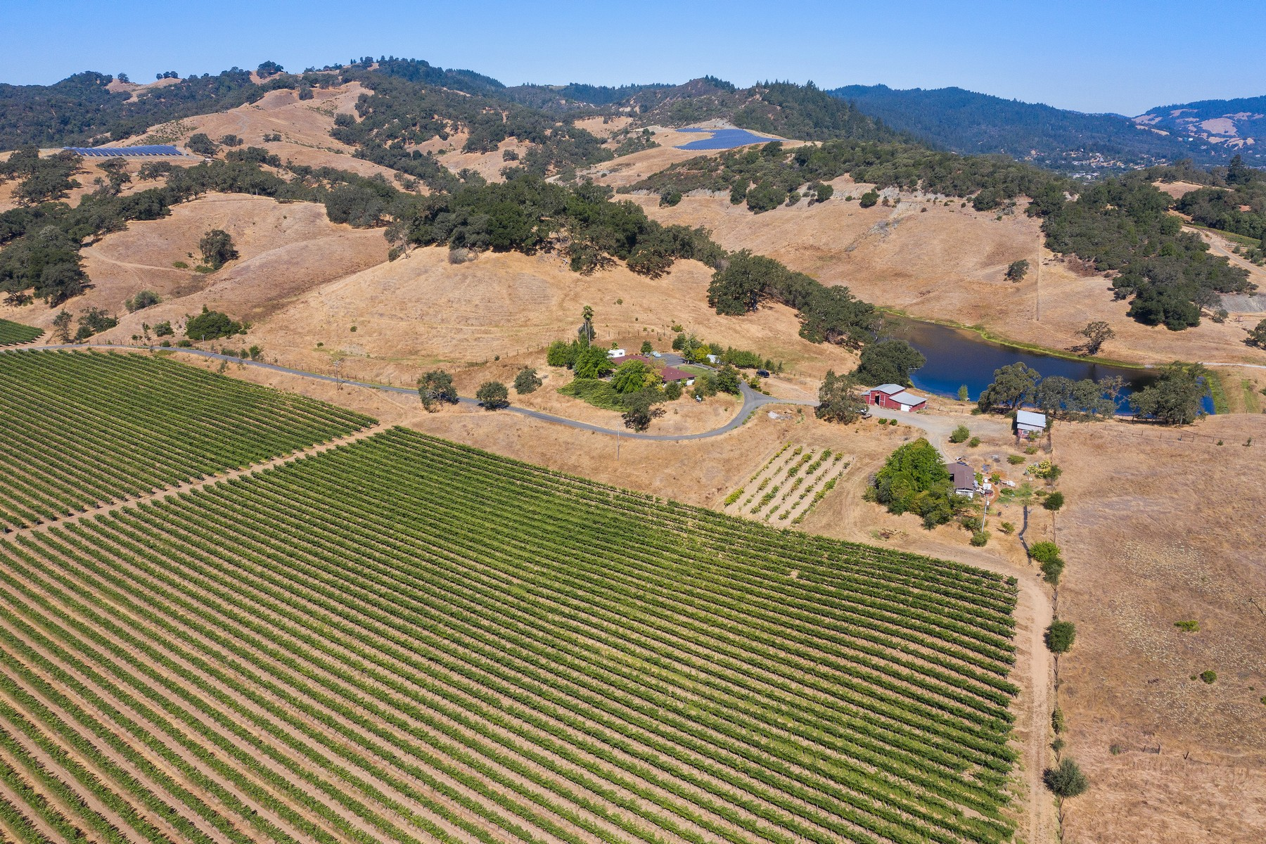 Vineyard Real Estate for Sale at Lakeview Wine Ranch 900 Hiatt Road Cloverdale, California 95425 United States