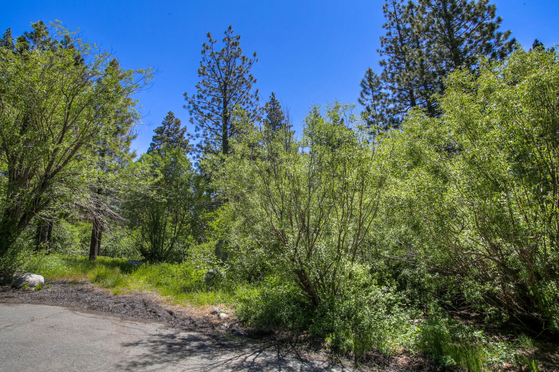 Additional photo for property listing at 13794 Donner Pass Road, Truckee, California 96161 13794 Donner Pass Road Truckee, California 96161 Estados Unidos