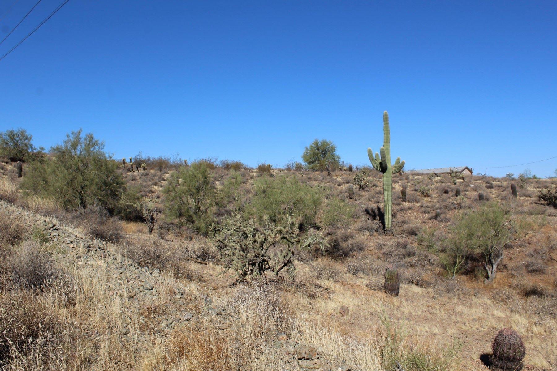 土地,用地 为 销售 在 Lovely acre lot in north Phoenix with incredible views 0 E Dove Valley Rd, 菲尼克斯(凤凰城), 亚利桑那州, 85085 美国