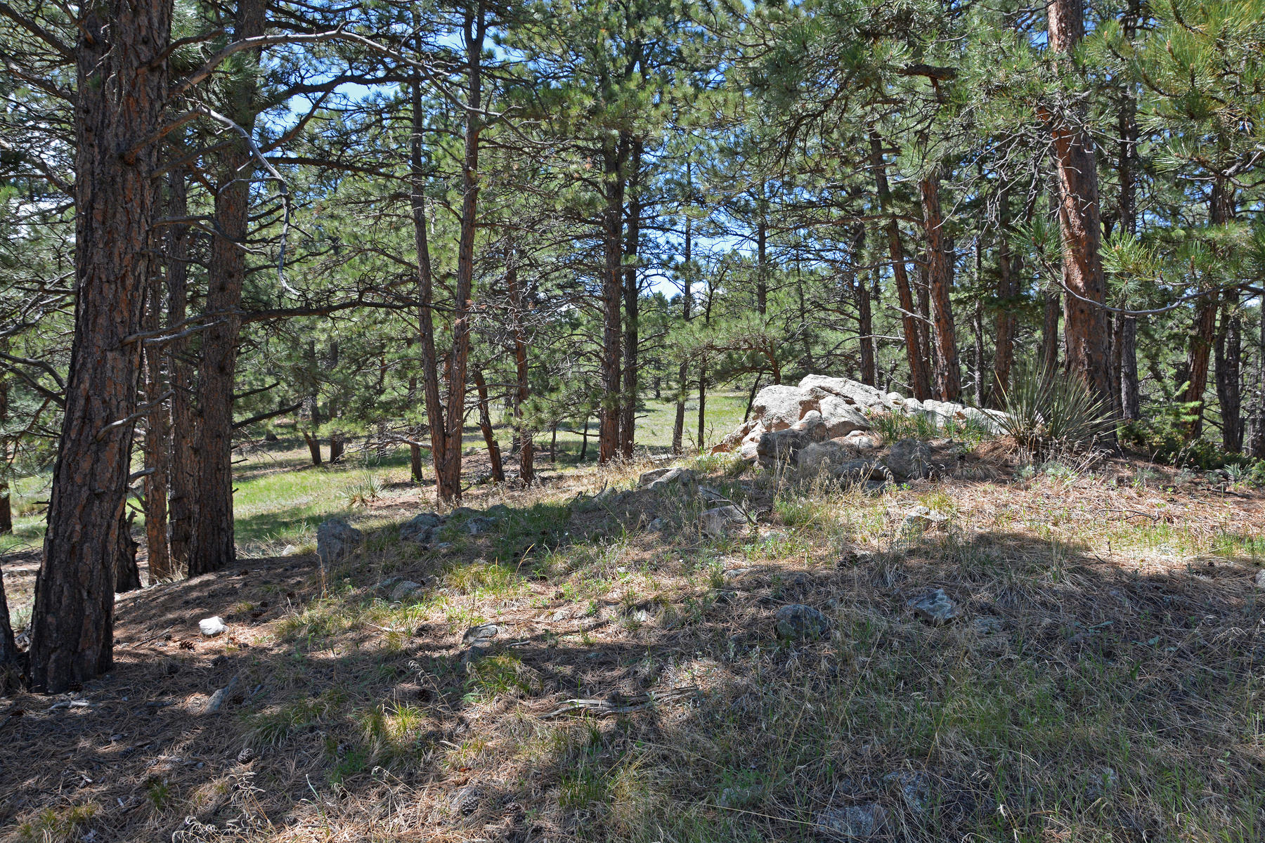 Additional photo for property listing at Bald Mountain Open Space  90 Acres Offered 4111 Sunshine Canyon Dr Boulder, Colorado 80302 United States