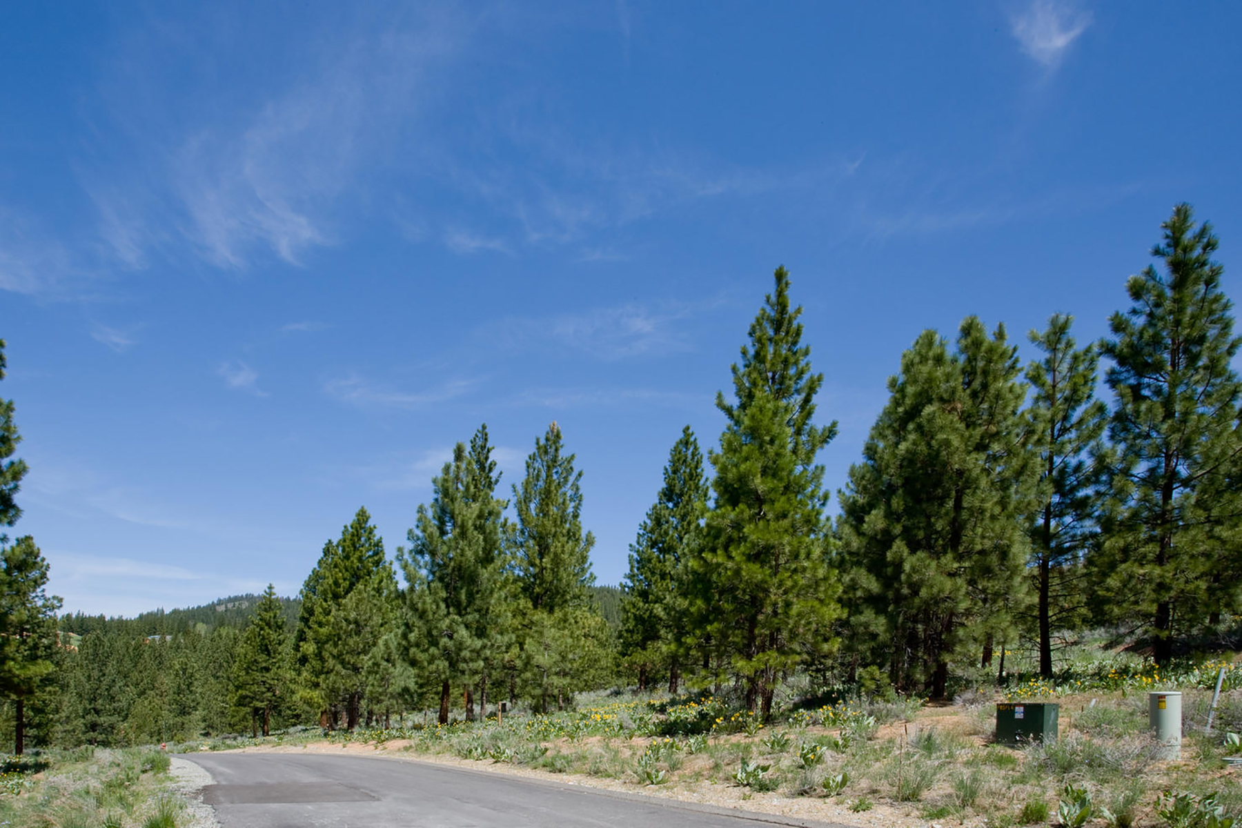 Additional photo for property listing at 306 Arrowleaf, Portola, CA 96122 306 Arrowleaf Road Portola, California 96122 United States