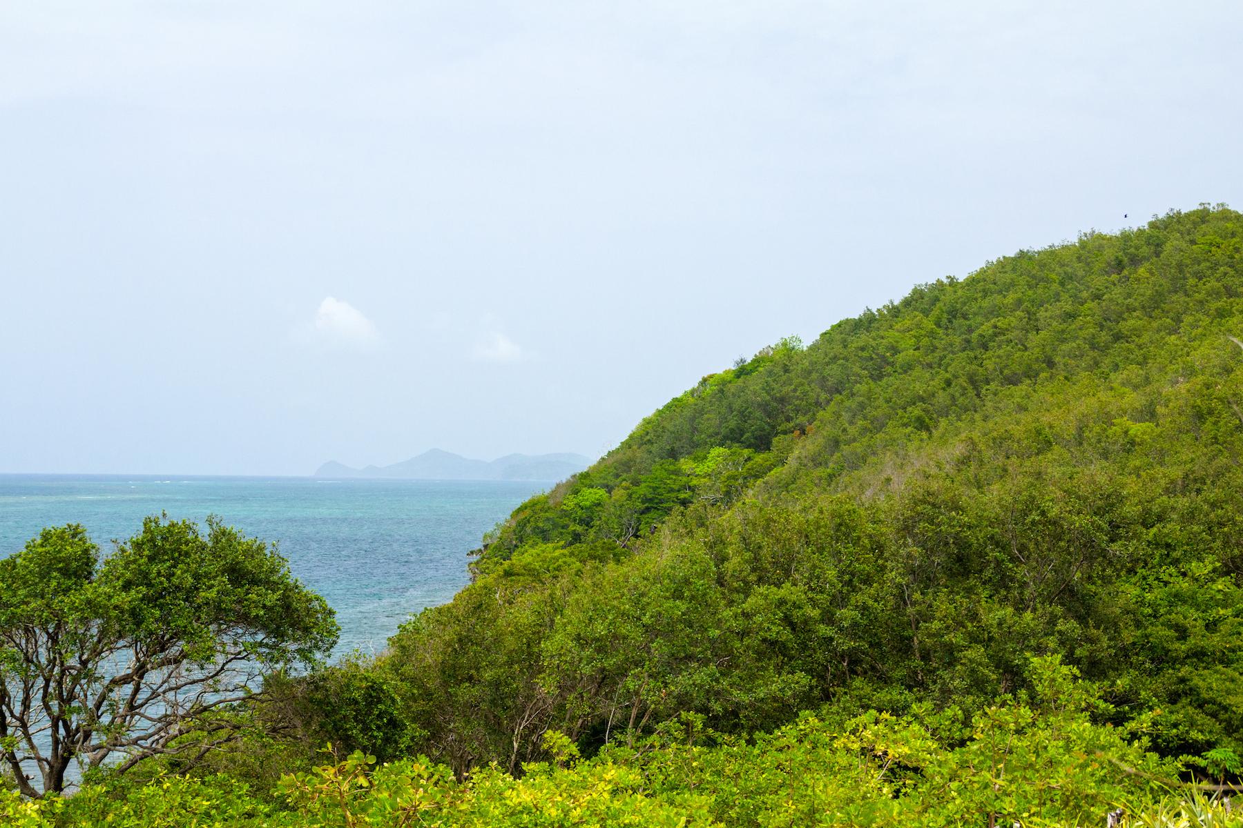 Additional photo for property listing at Port Royal, Roatan, Bay Islands Honduras