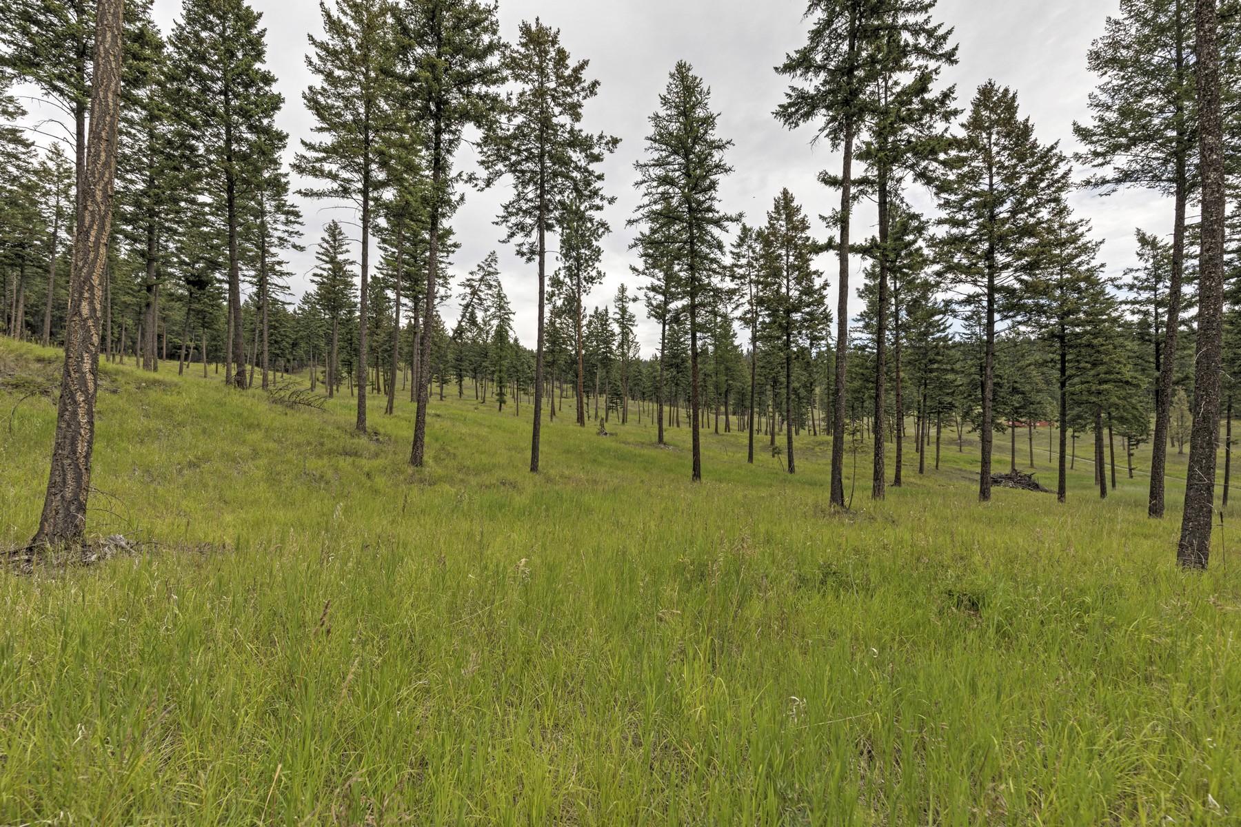 Land voor Verkoop op Nhn Bierney Creek Road , Lakeside Lakeside, Montana 59922 Verenigde Staten