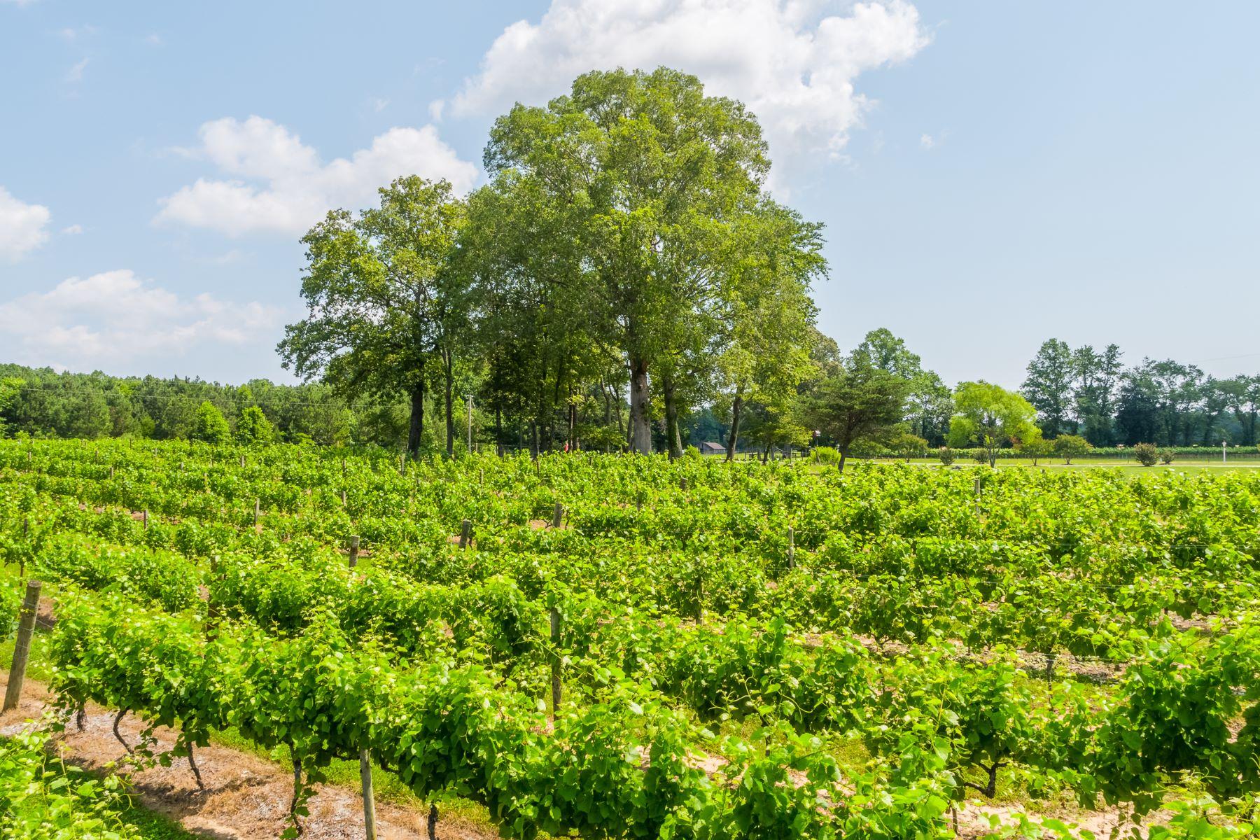 Vineyard Real Estate para Venda às 1025 Goodluck Road, Kilmarnock, VA 22482 Kilmarnock, Virginia 22482 Estados Unidos