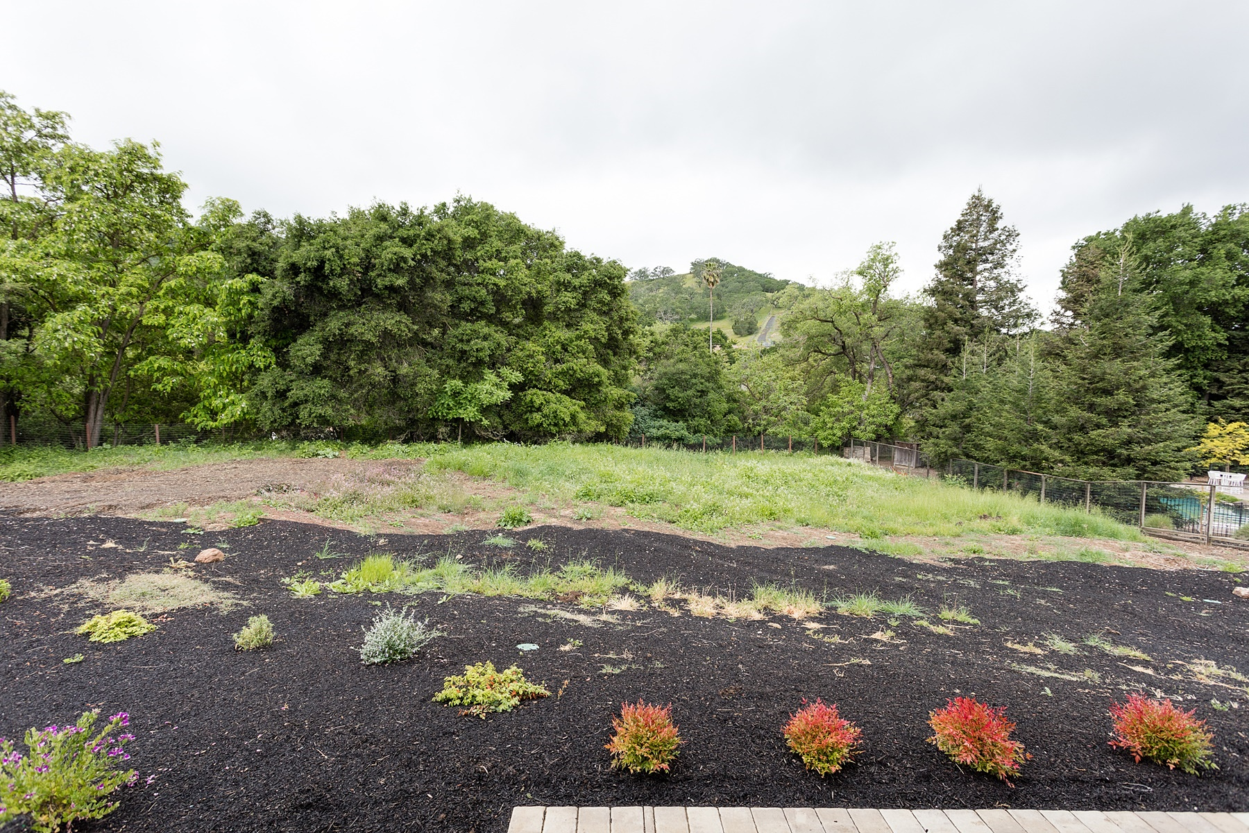 Additional photo for property listing at Country Quiet, Yet City Close 550 Pine Creek Road Walnut Creek, California 94598 Estados Unidos