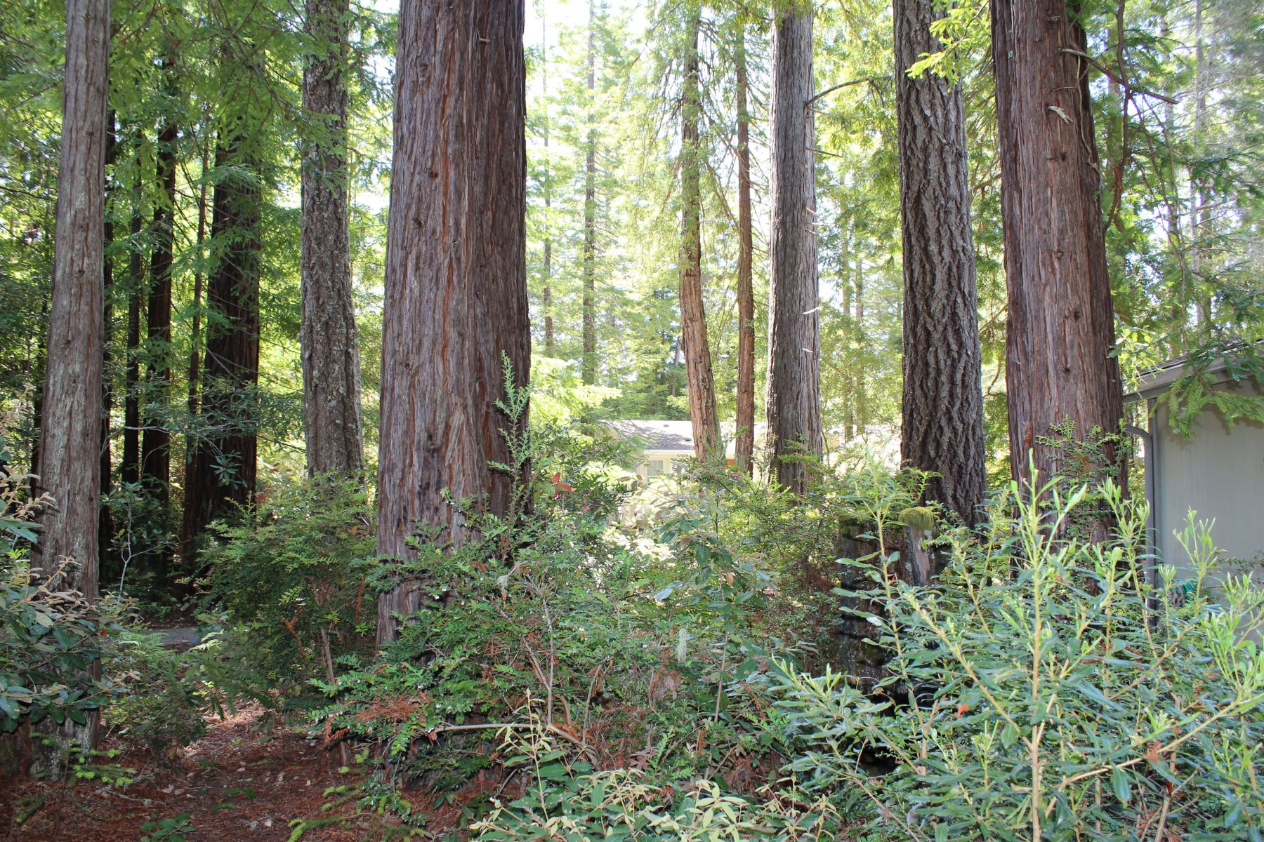 Additional photo for property listing at Shelton 43300 Little River Airport Road #69 Little River, California 95456 United States