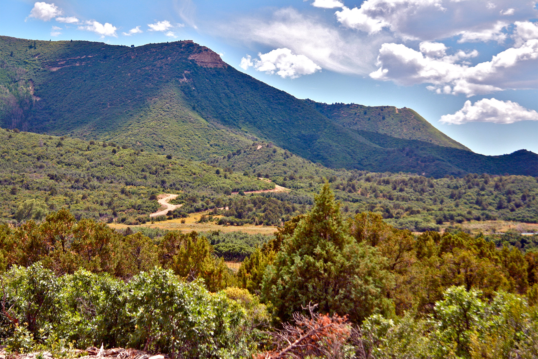 Additional photo for property listing at Menefee Mountain Ranch 44662 HWY 160 Mancos, Colorado 81328 United States