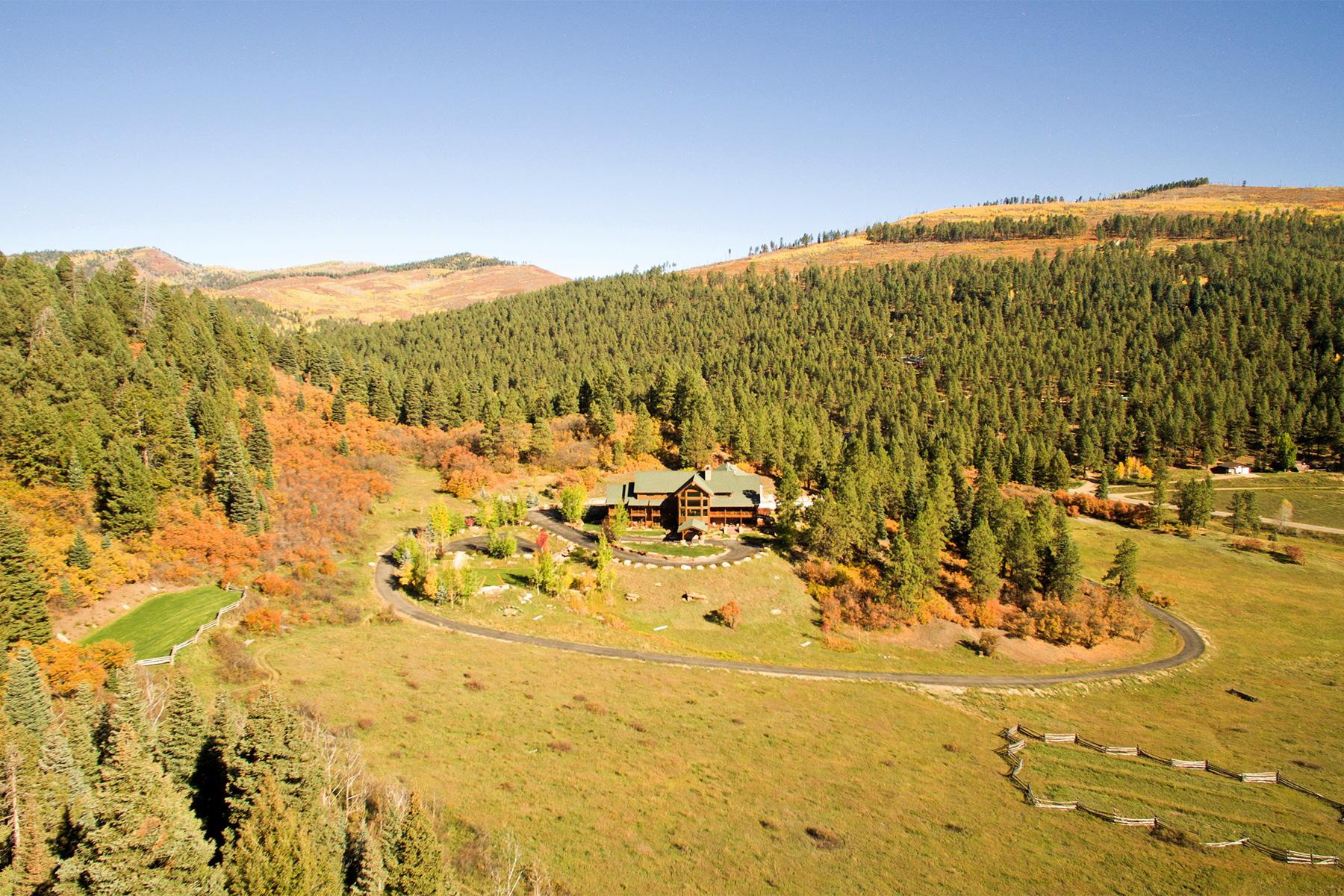 Maison unifamiliale pour l Vente à Retreat at Thunder Ridge 14688 CR 240 Durango, Colorado, 81301 États-Unis