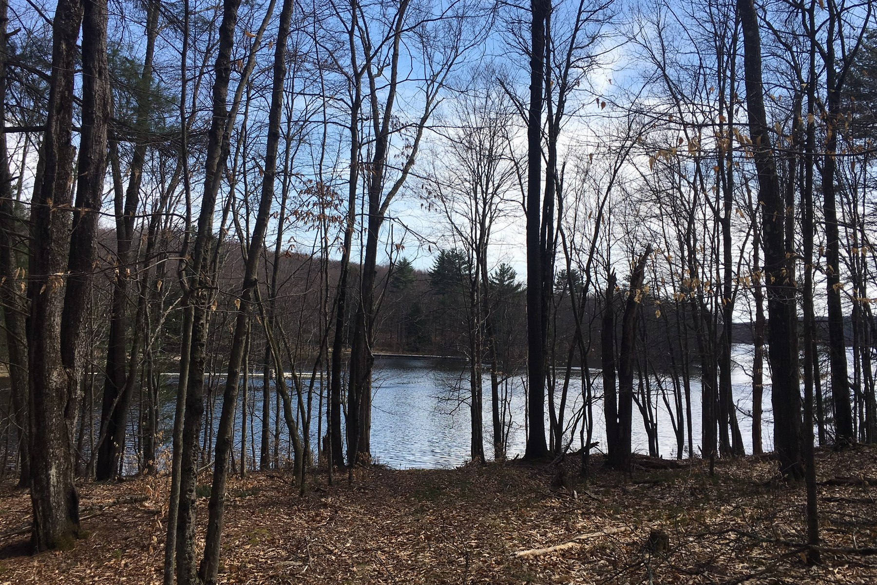Additional photo for property listing at Toronto Reservoir Waterfront at The Chapin Estate Top Ridge Lot 9 Chapin Trail 伯特利, 纽约州 12720 美国