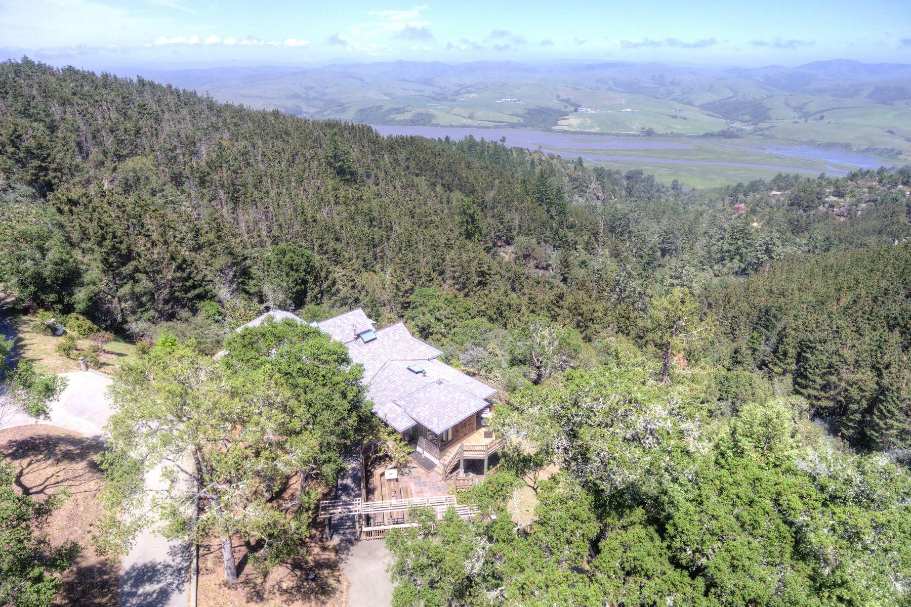 Частный односемейный дом для того Продажа на The Raven's Roost 30 Buck Point Road Inverness, Калифорния 94937 Соединенные Штаты
