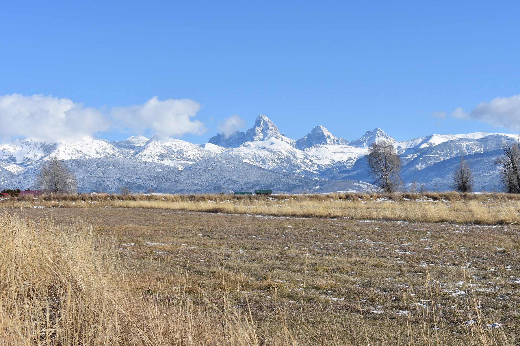 Land for Active at Large Acreage with Incredible View 2169 Dusty Diamond Way Tetonia, Idaho 83452 United States