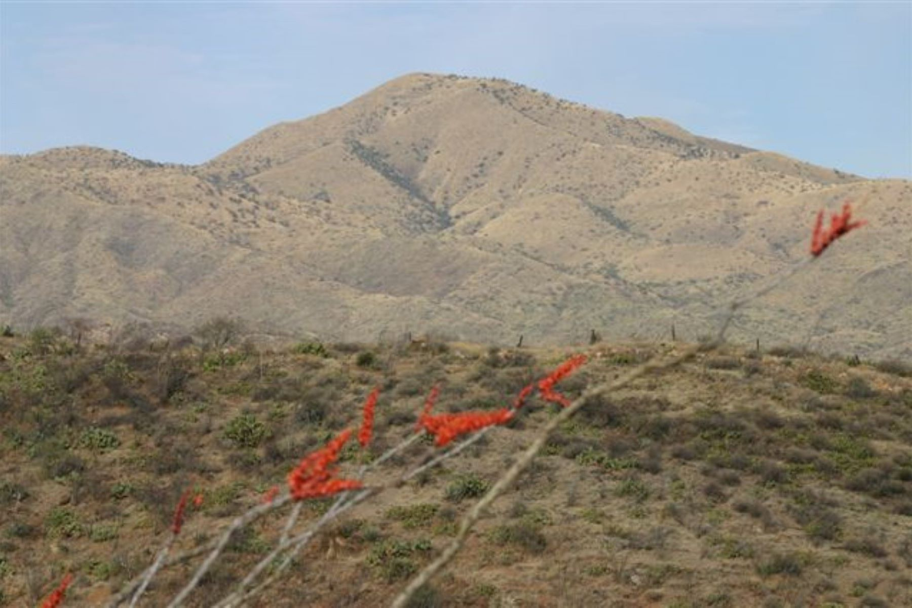 Land for Active at Majestic Mountain Views 19521 S. Sonoita Highway SE Vail, Arizona 85641 United States