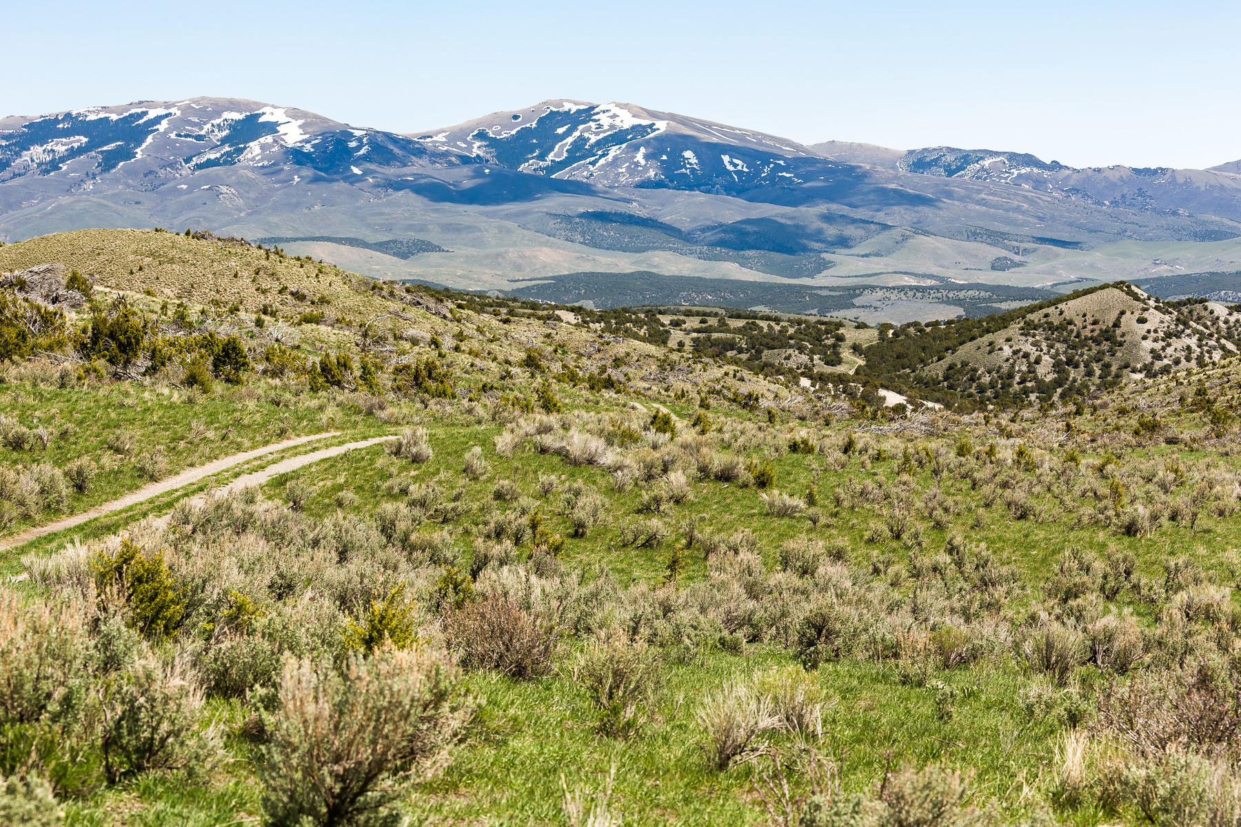 Additional photo for property listing at River View Ranch 7720 N Etna Road Grouse Creek, 犹他州 84313 美国