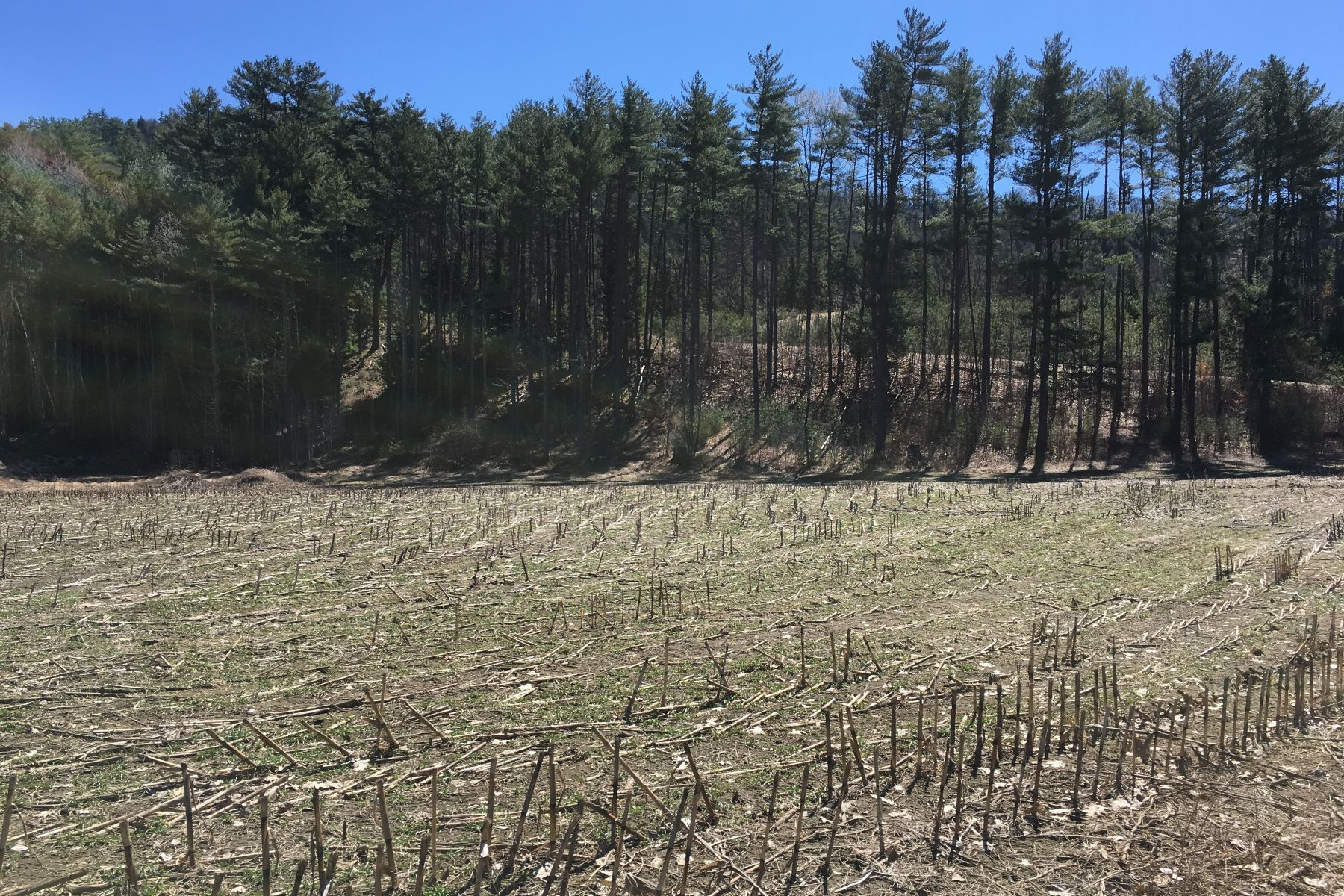 Land for Sale at 4.6 Acres in Orford Lot 2 Nh Route 10 #2 Orford, New Hampshire 03777 United States