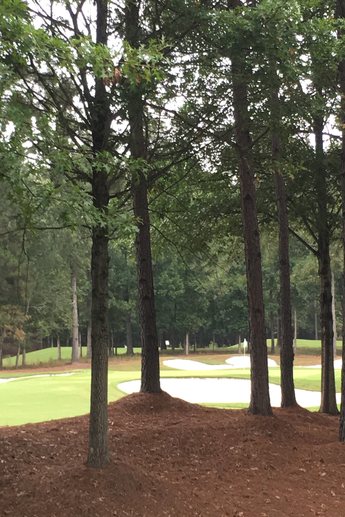 Land for Sale at One Of Last Available Larger Estate Lots 1009 Crescent River Pass Suwanee, Georgia 30024 United States