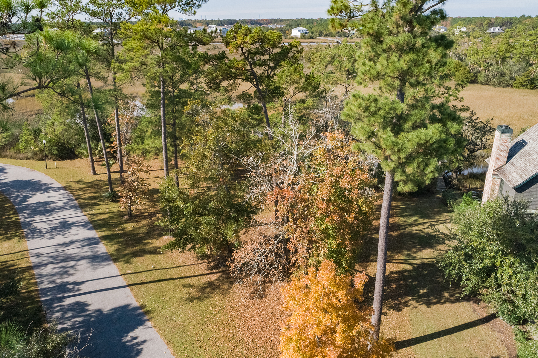 Additional photo for property listing at  Daniel Island, Νότια Καρολίνα 29492 Ηνωμένες Πολιτείες