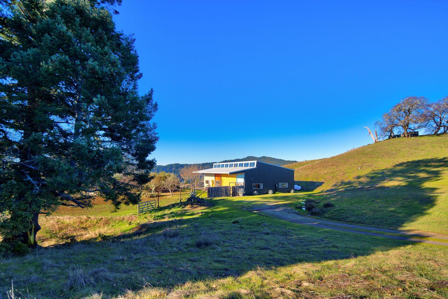 Single Family Homes for Active at A Modern Retreat on 178 Acres Near Ukiah, California 12560 Orr Springs Rd Ukiah, California 95482 United States