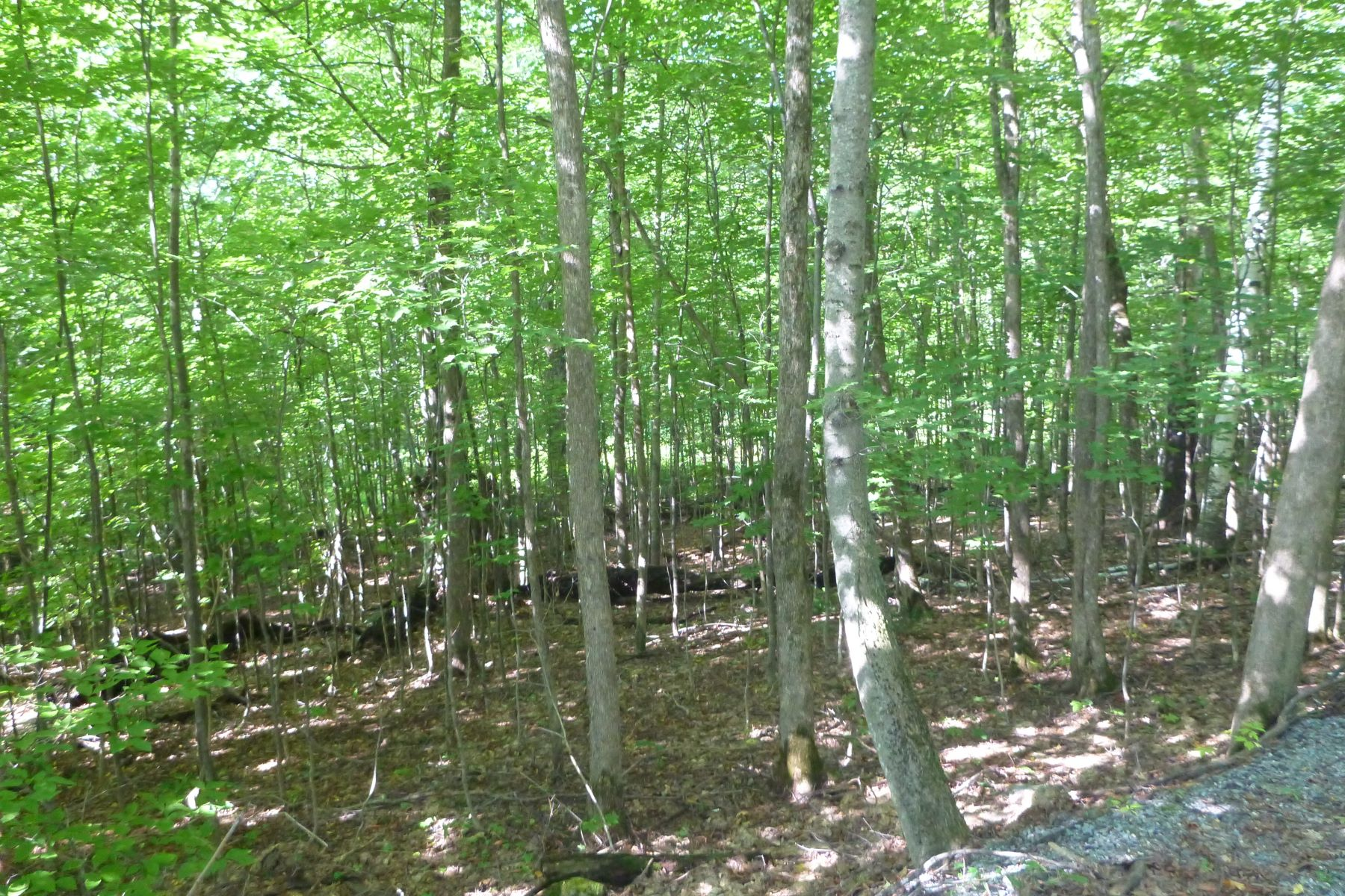 Land for Sale at Ganson Hill Land 0 Ganson Hill Rd Hubbardton, Vermont 05732 United States