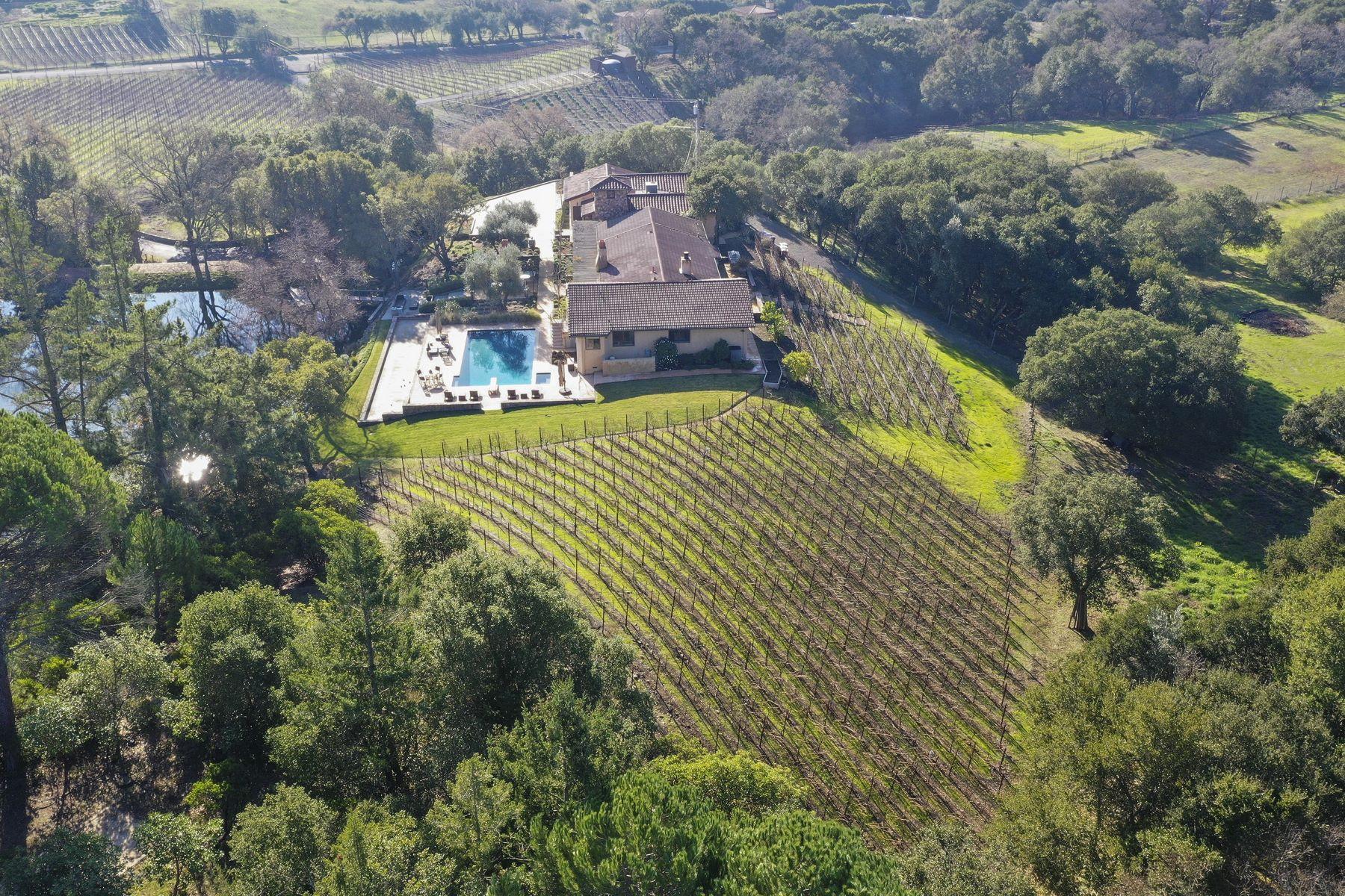 Single Family Homes para Venda às Pastoral Vineyard Napa Valley Estate 4268 E 3rd Avenue, Napa, Califórnia 94558 Estados Unidos