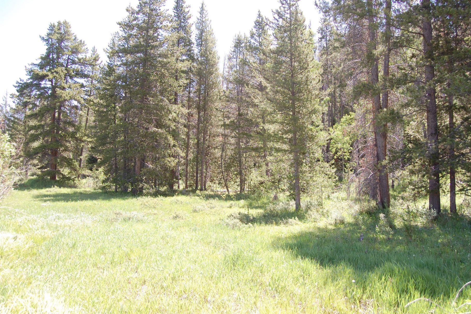 土地 のために 売買 アット Sky Hitch @ Stagecoach 20680 Stirrup Way, Oak Creek, コロラド 80467 アメリカ