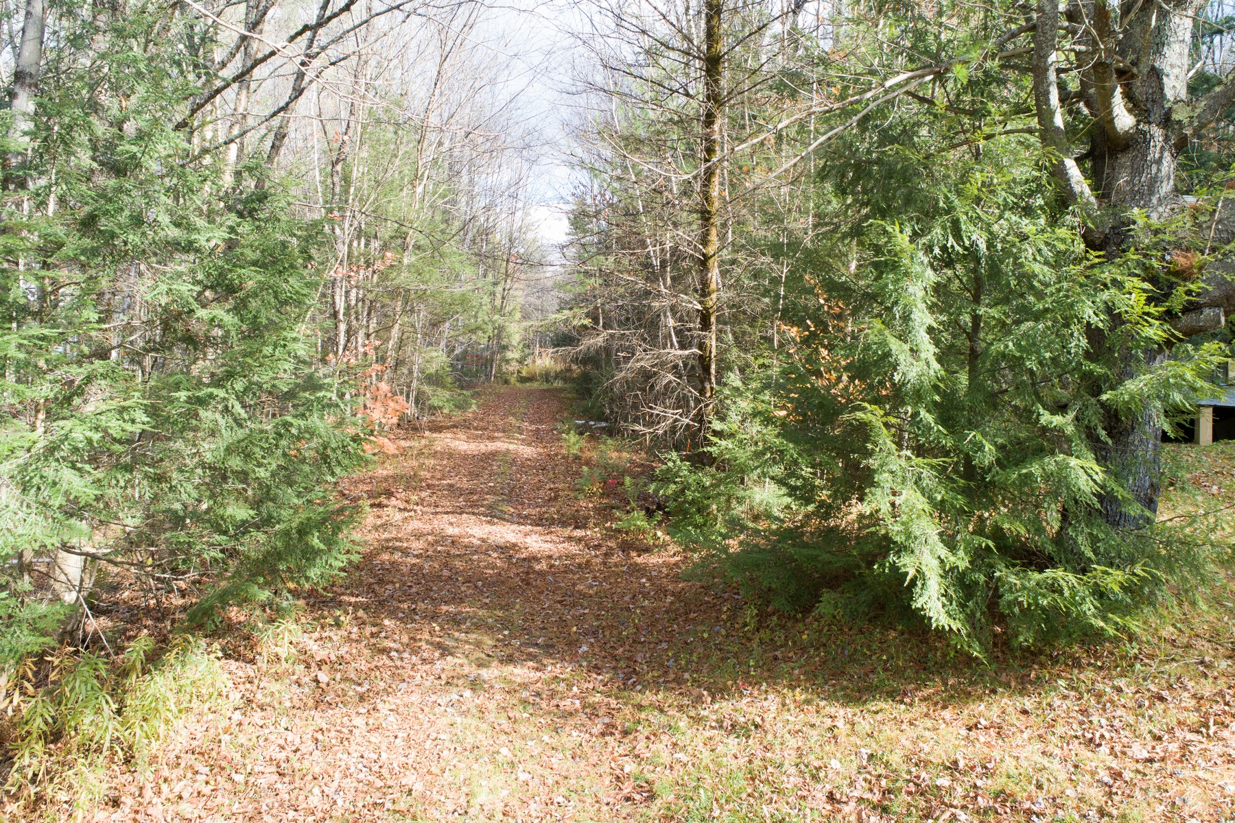 Land for Sale at 8487 Route 30 Highway Jamaica, Vermont 05343 United States