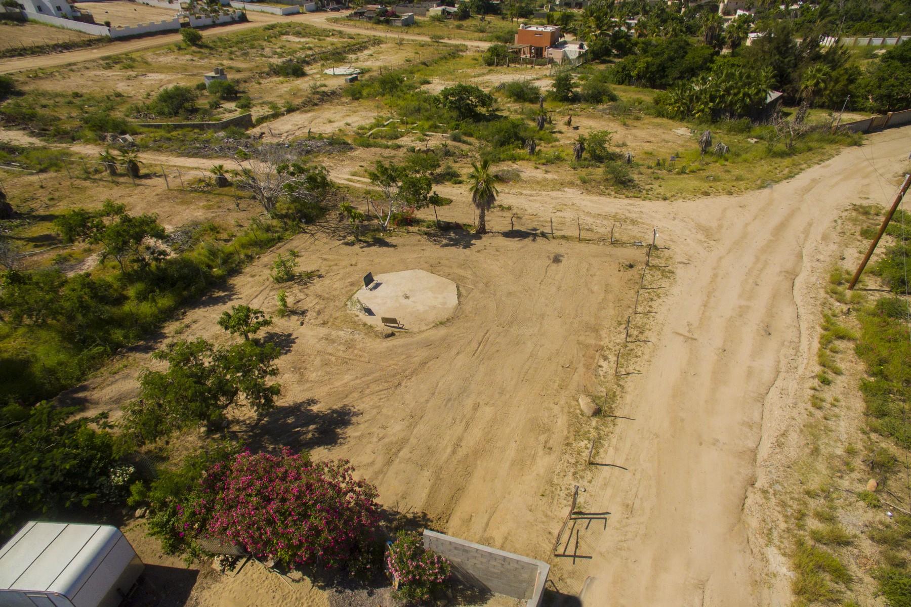 Additional photo for property listing at Lote Palapa Las Brisas Todos Santos, Baja California Sur 23300 México