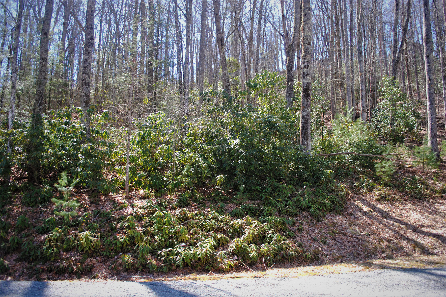 Land for Sale at STONECREST - FLEETWOOD Lot 35 Maple Leaf Rd Fleetwood, North Carolina 28626 United States