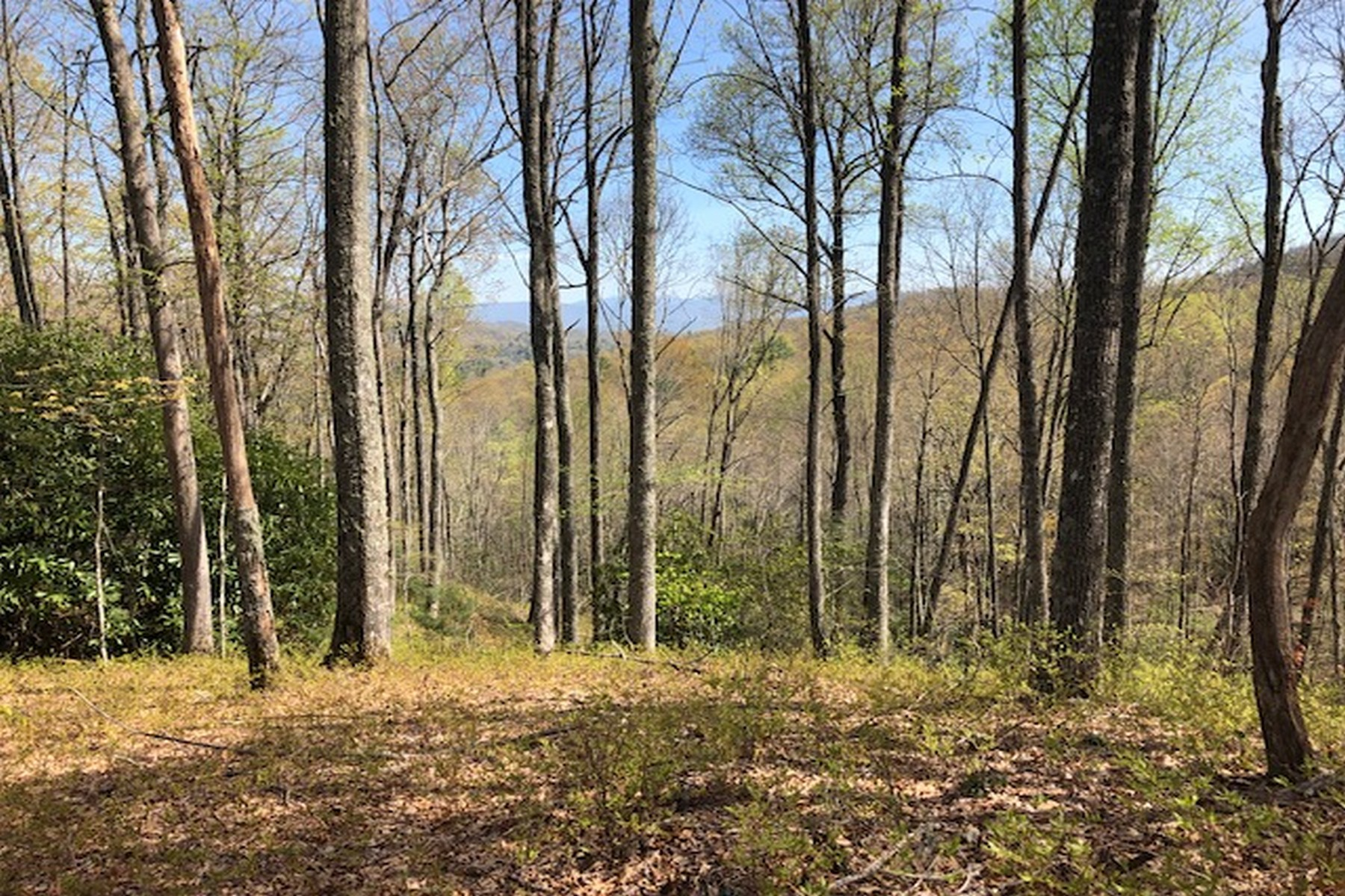 Land for Active at Lot 110 Crippled Oak Trail Sapphire, North Carolina 28774 United States