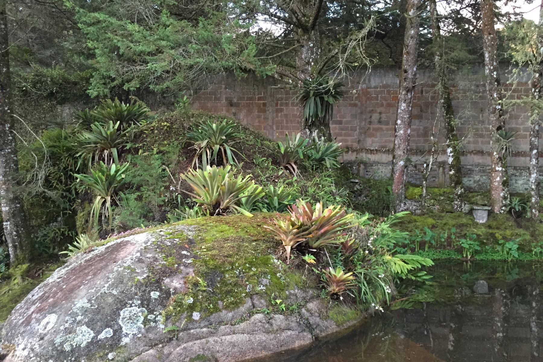 Nhà ở một gia đình vì Bán tại Charm and coziness at an gorgeous location Rodovia Teresópolis-Itaipava Teresopolis, Rio De Janeiro, 25966-200 Brazil