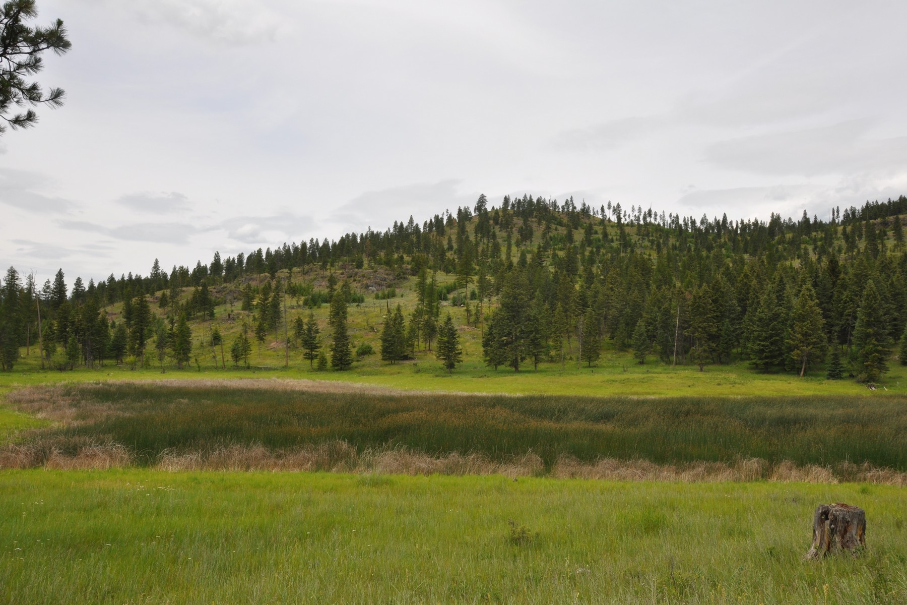Additional photo for property listing at Nhn Us Hwy 2 W, Kila, MT 59920 Nhn  Us Hwy 2   W Kila, Montana 59920 United States