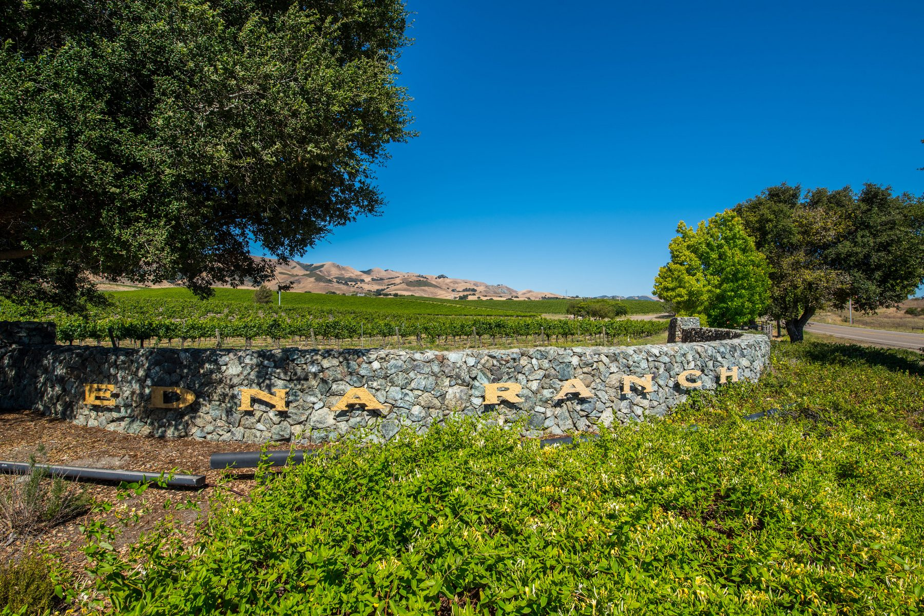 Maison unifamiliale pour l Vente à Stunning Wine Country Estate 6970 Canada Vista San Luis Obispo, Californie, 93401 États-Unis