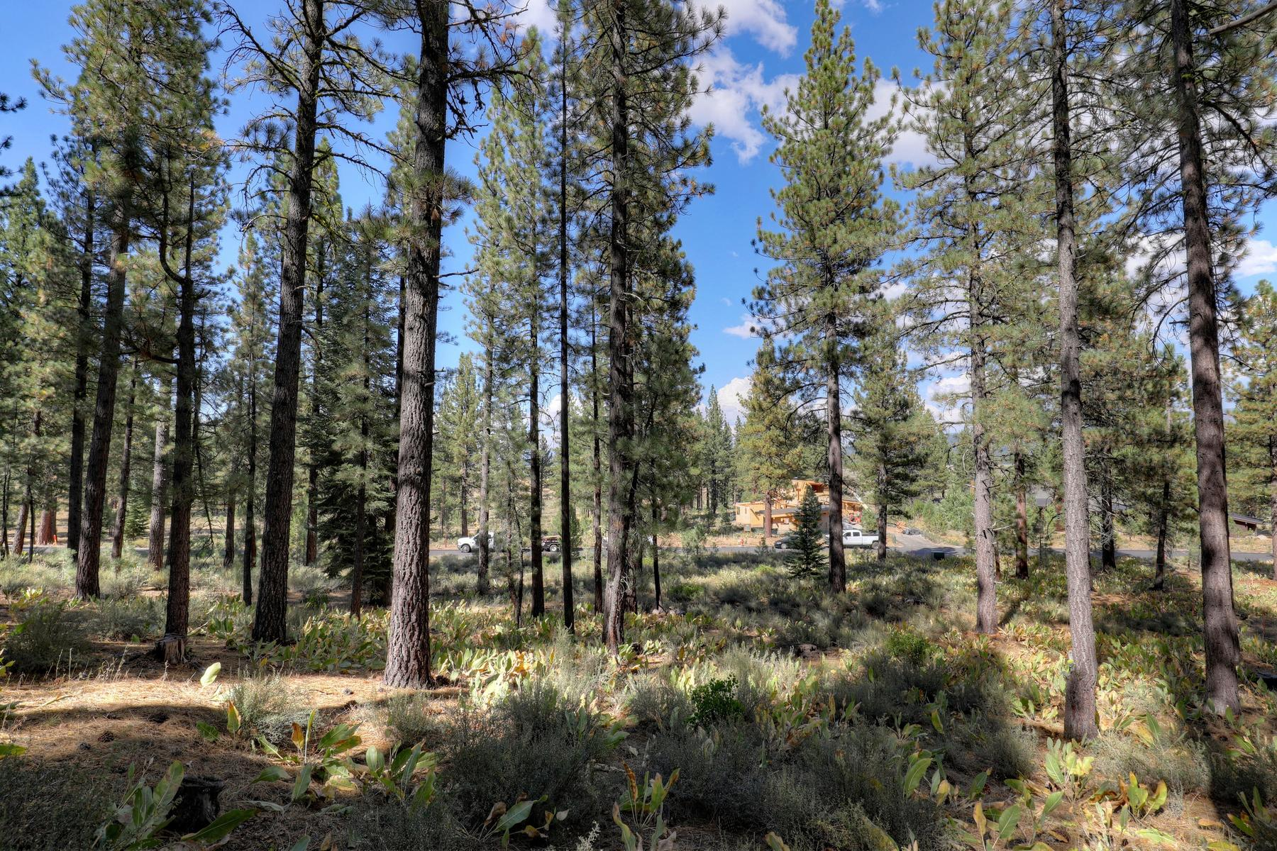 Additional photo for property listing at 7520 Lahontan Drive, Truckee, CA 7520 Lahontan Drive Truckee, California 96161 United States
