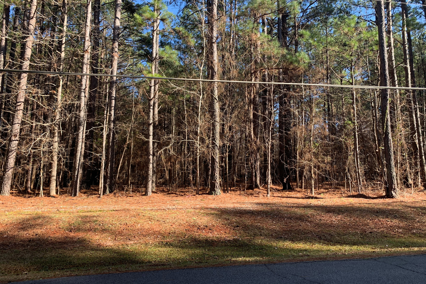 Land for Sale at 60+/- Acres With Incredible Residential Development Potential 426 Bernhard Road Fayetteville, Georgia 30215 United States