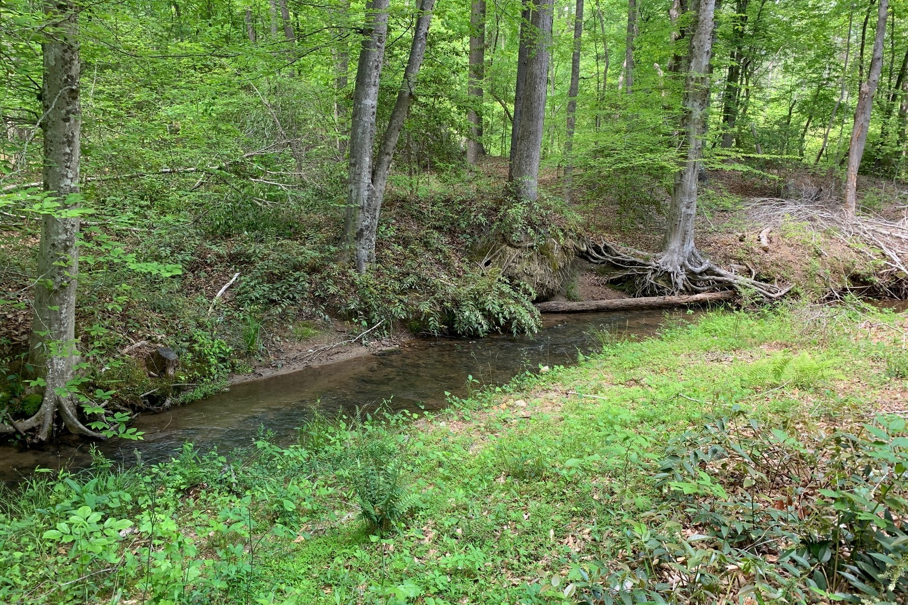 Land for Active at 0 Mcentire Road in Tryon, NC 0 Mcentire Road Tryon, North Carolina 28782 United States