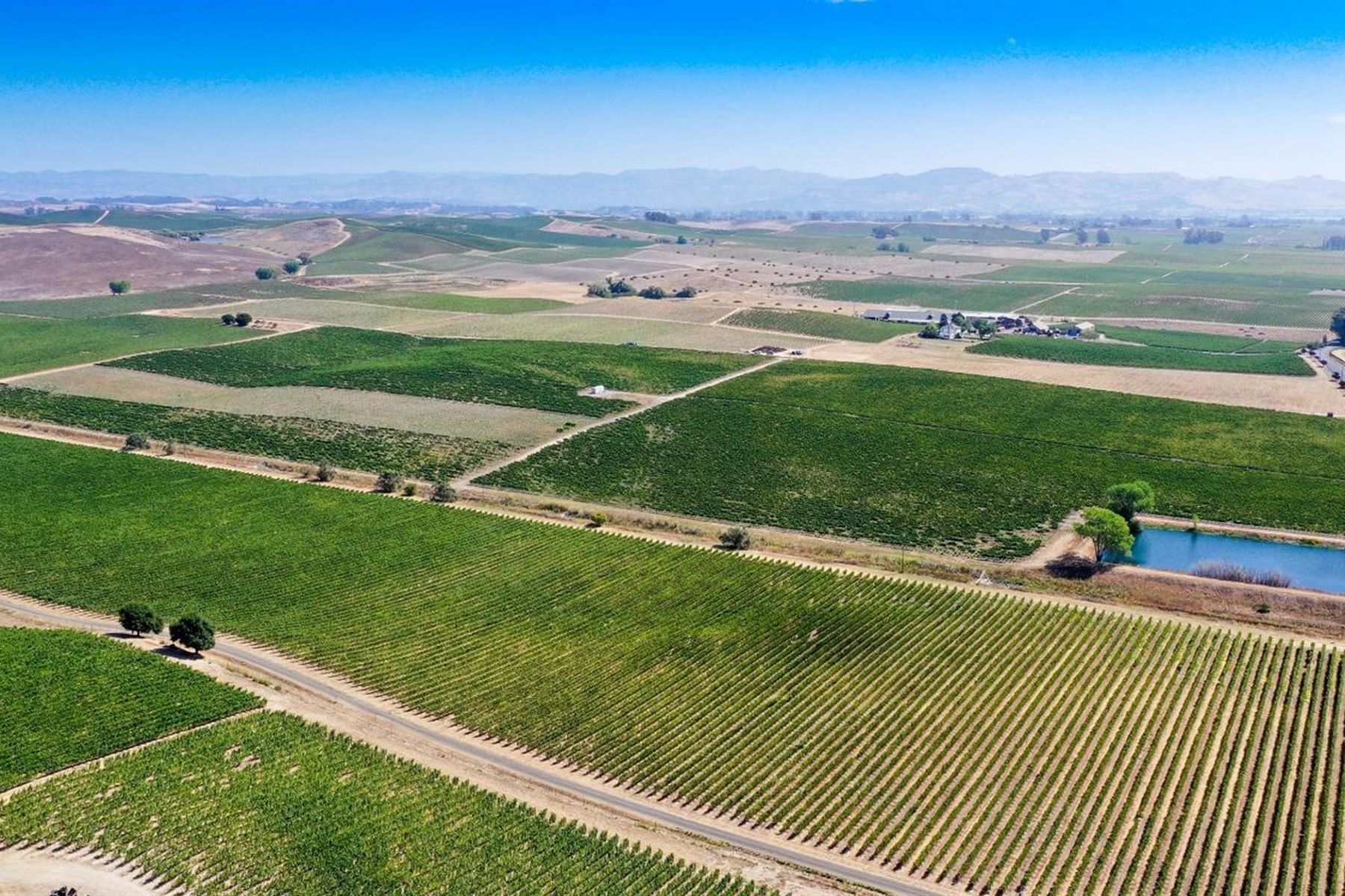 Land for Sale at Incredible +-60 Acres Producing Vineyard in World Famous Carneros AVA 26090 Ramal Road Sonoma, California 95476 United States