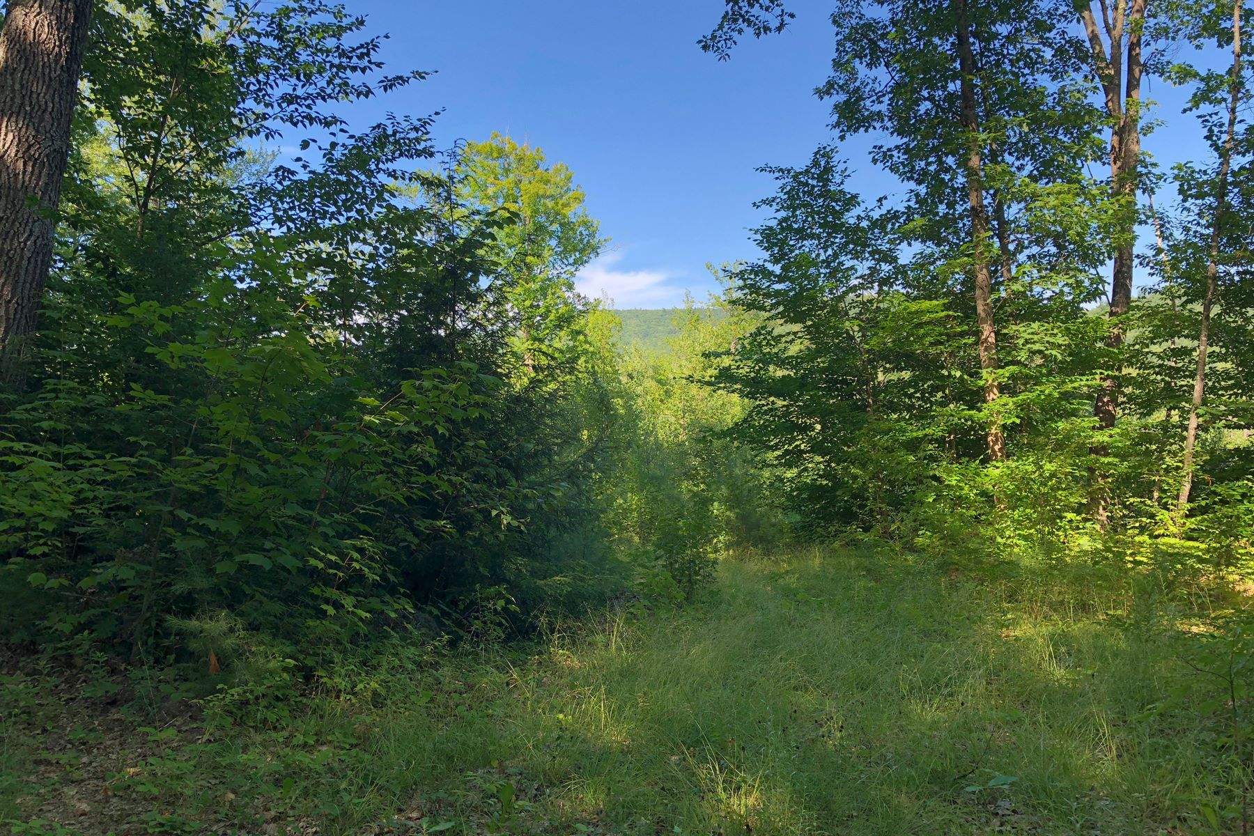 Land for Sale at 12 Page Road, Campton 12 Page Rd Campton, New Hampshire 03223 United States