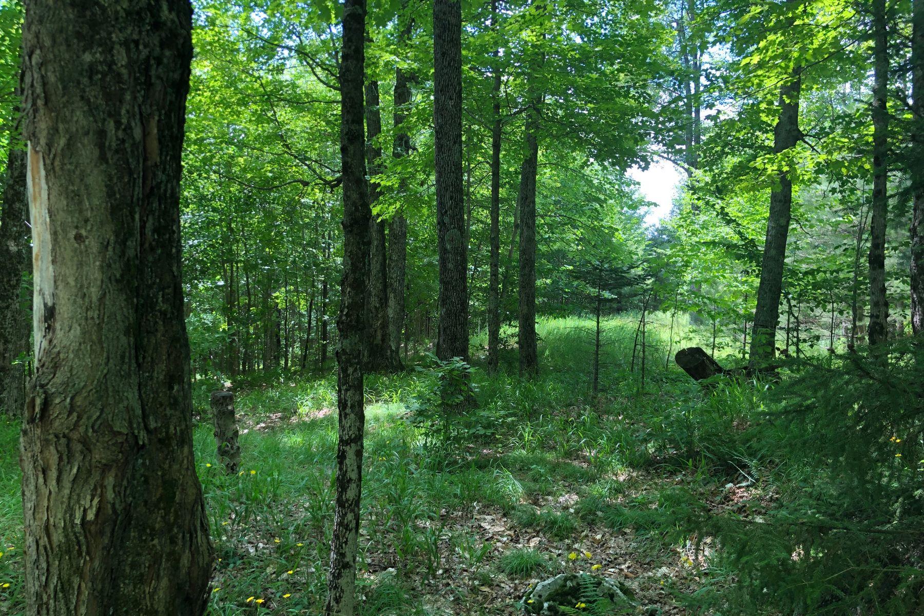 Land für Verkauf beim Mt. Pisgah View Lots 35 David Lane, Saranac Lake, New York 12983 Vereinigte Staaten
