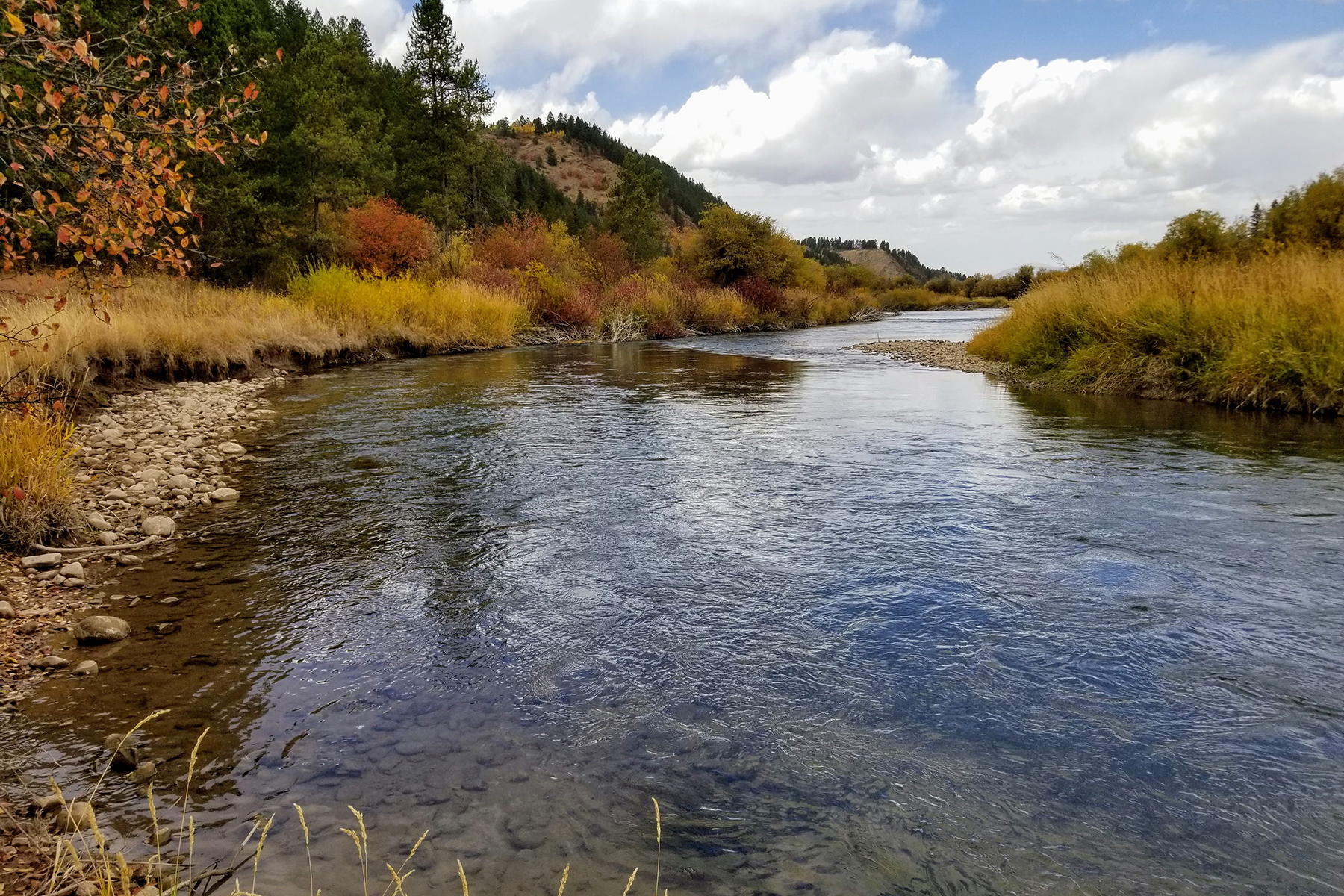 أراضي للـ Sale في 40.6 Exceptional Acres on the Salt River TBD US Hwy 89, Thayne, Wyoming 83127 United States