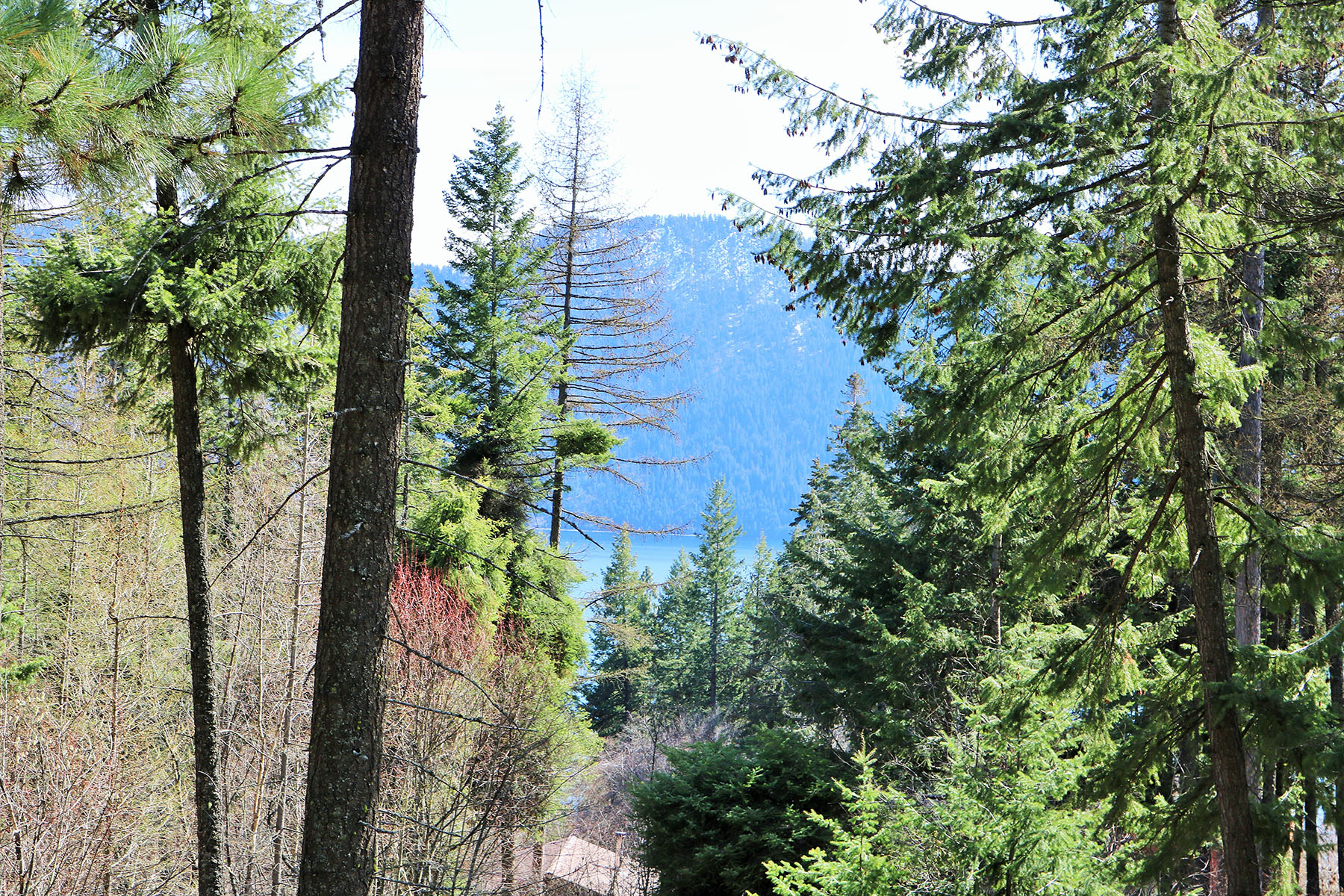 Terreno per Vendita alle ore A view of Lake Pend Oreille on this 0.6 acre property NNA N Terrace Dr 23A Bayview, Idaho, 83803 Stati Uniti