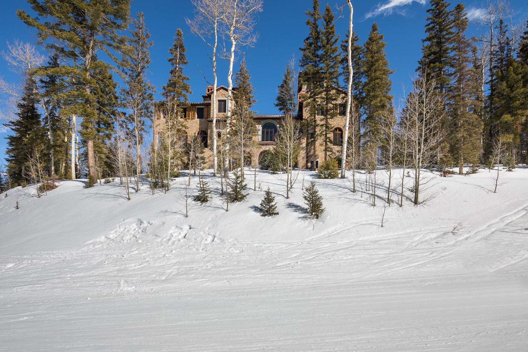 Additional photo for property listing at Villa Montagna 146 Hood Park Telluride, Colorado 81435 United States