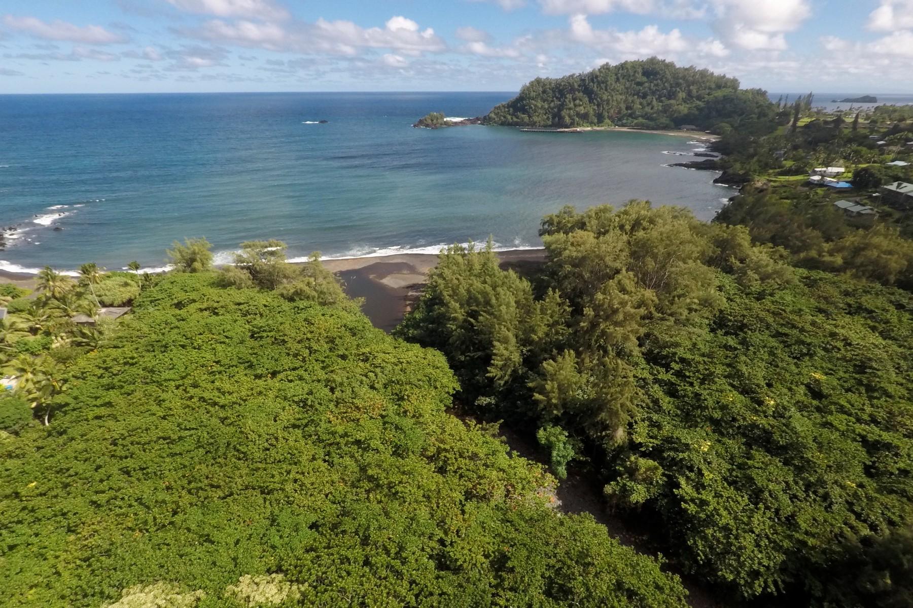 Οικόπεδο για την Πώληση στο Oceanfront Vacant Land Offering, Hana Maui 0 Waikoloa Road, Hana, Χαβαη 96713 Ηνωμένες Πολιτείες