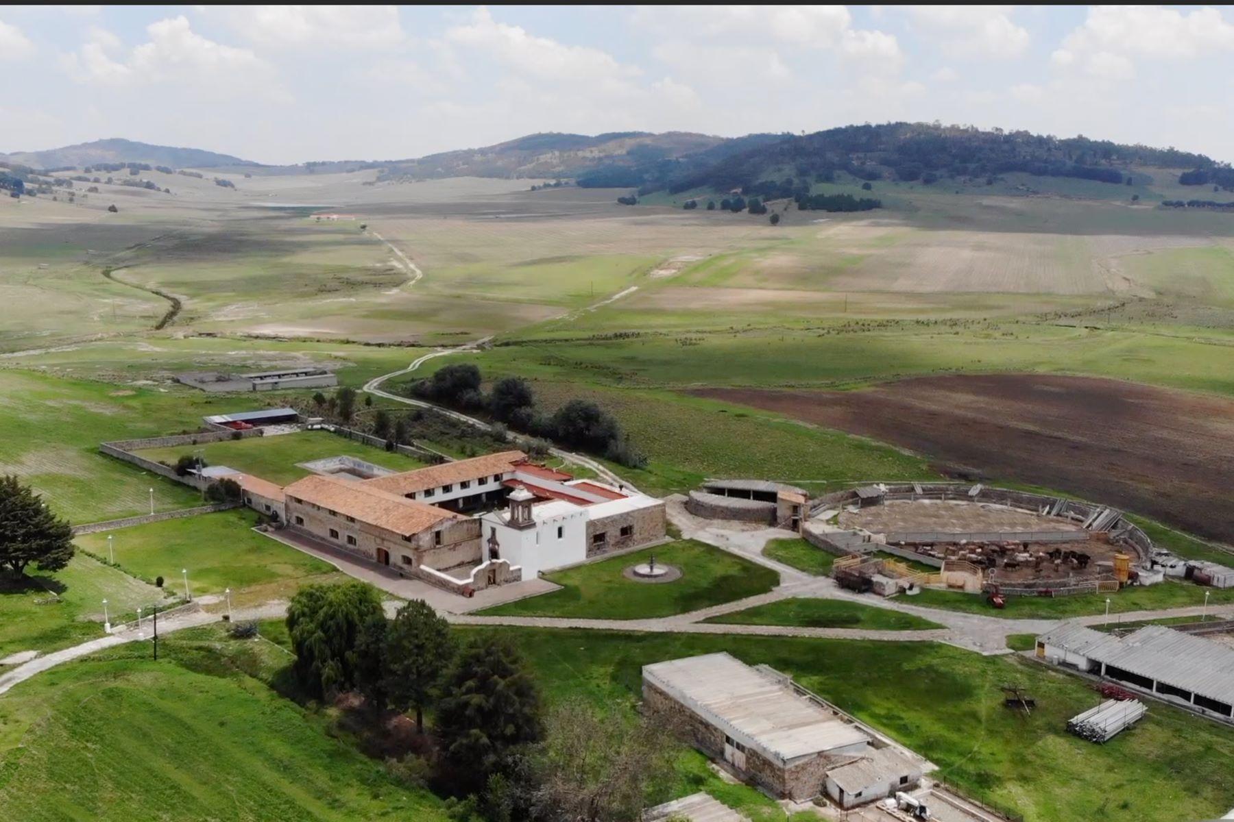 농장 / 목장 / 농장 용 매매 에 Hacienda Totó Other Mexico, Mexico 50300 멕시코