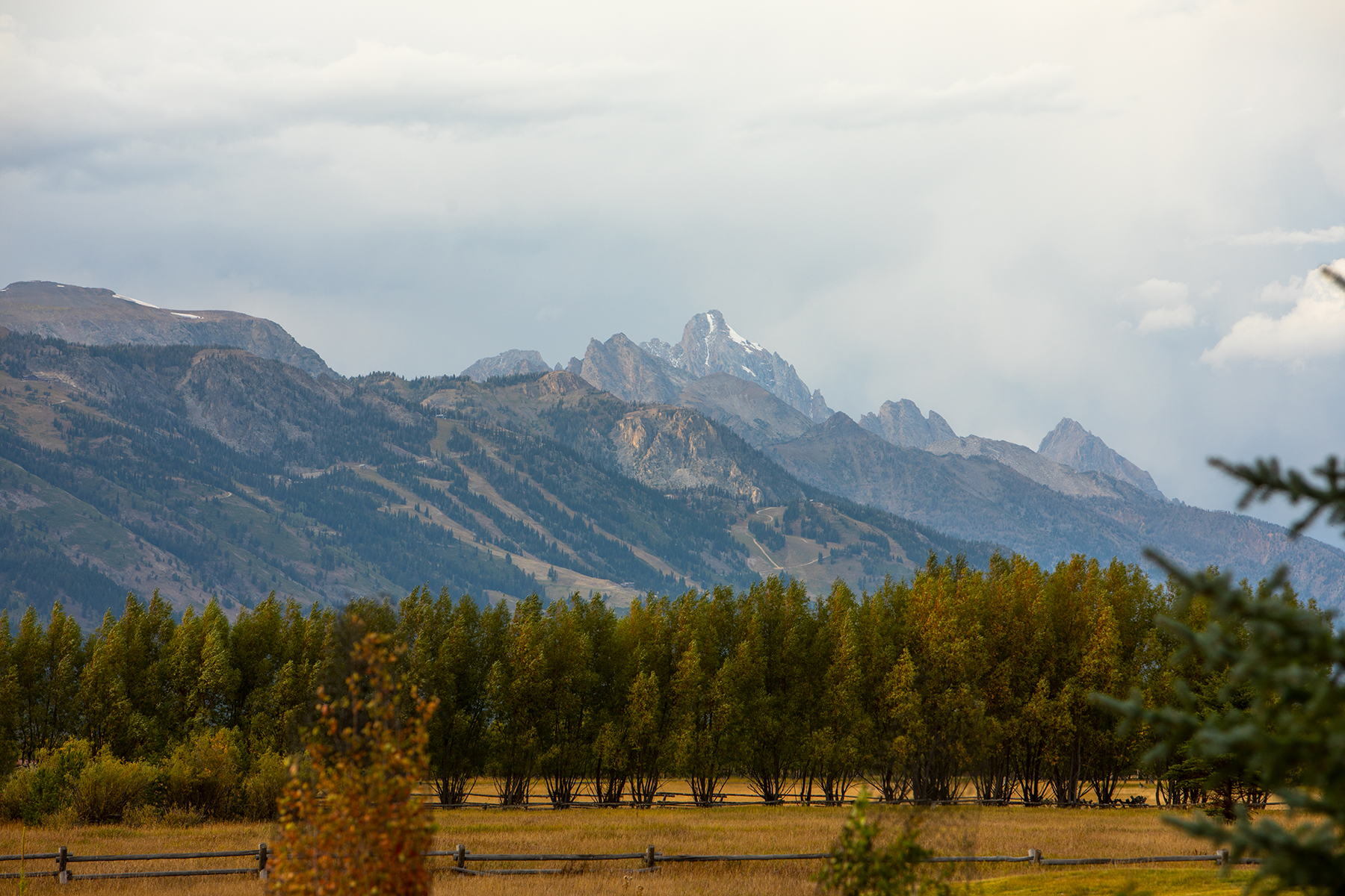 Additional photo for property listing at Pine Meadow Estate 250 S Pines Edge Ln, Wilson, Wyoming 83014 Vereinigte Staaten