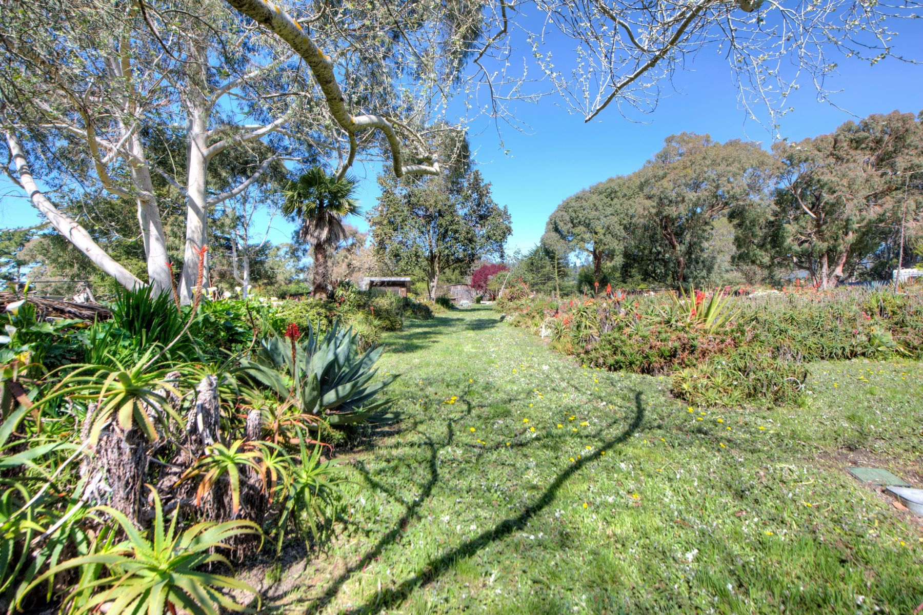 Single Family Homes for Sale at Unique Agricultural Estate 250 Mesa Rd Bolinas, California 94924 United States