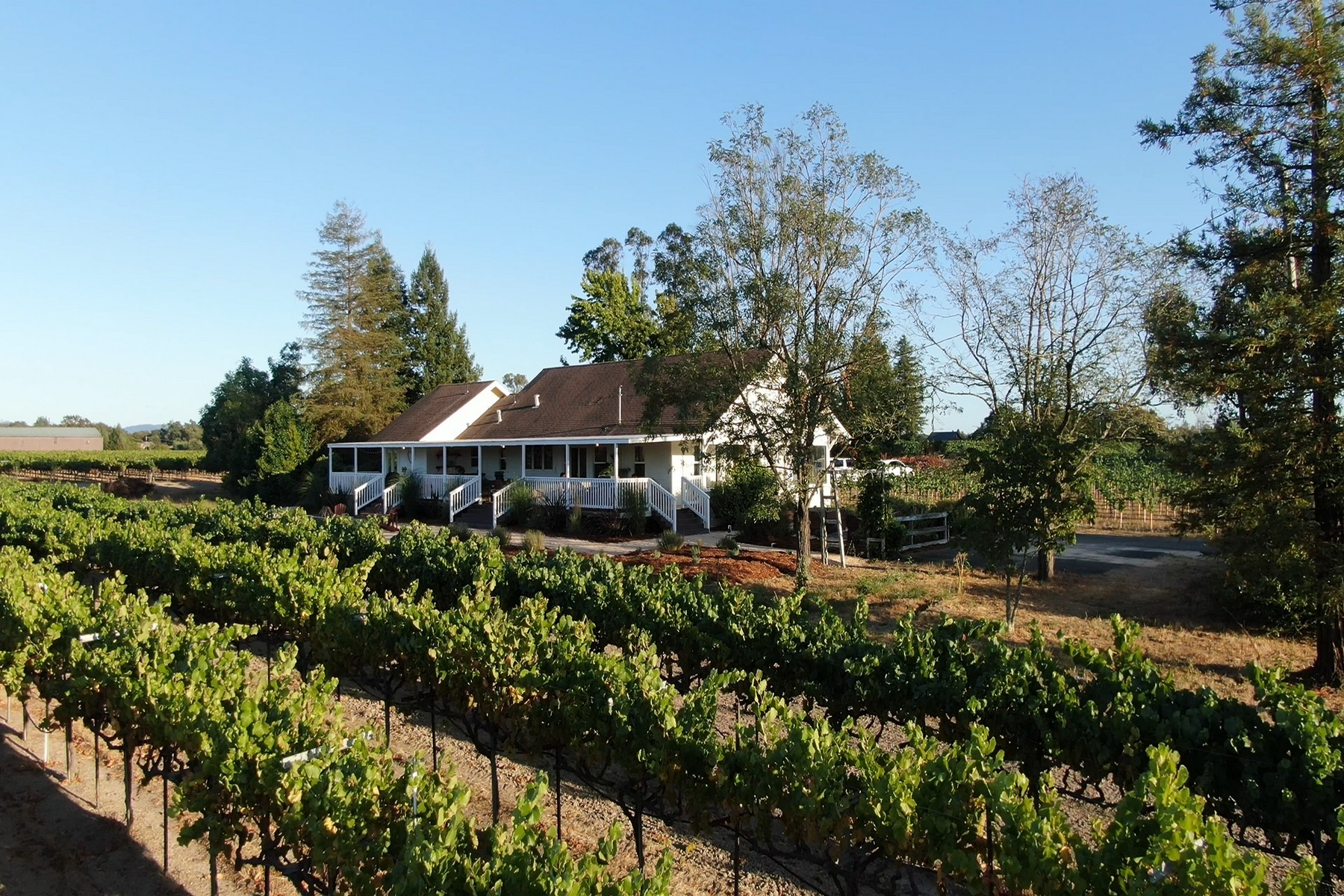 Single Family Homes por un Venta en Olivet Vineyard Farmhouse 2040 Olivet Road Santa Rosa, California 95404 Estados Unidos