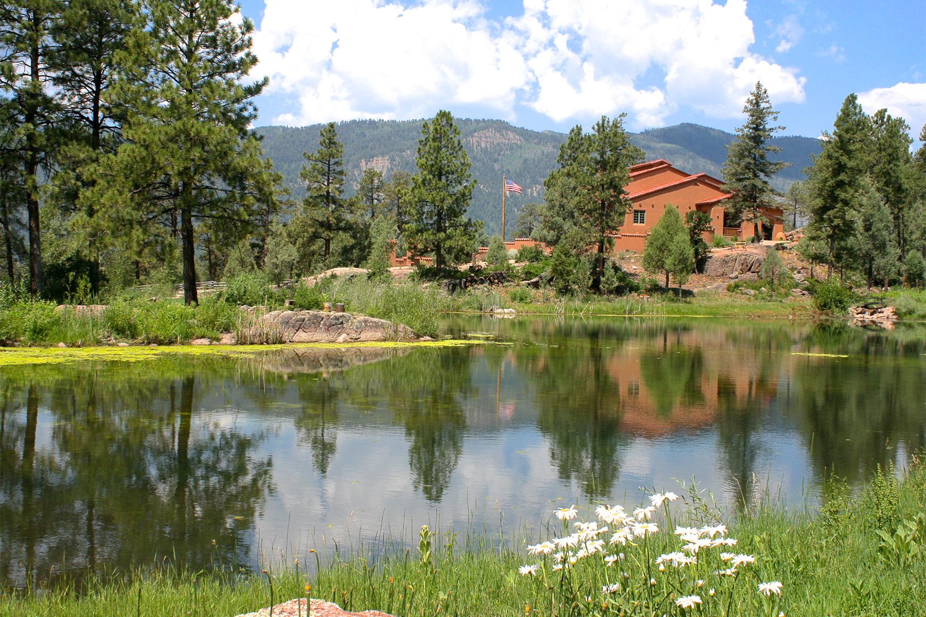 단독 가정 주택 용 매매 에 1401 Celadon Drive 1401 Celadon Drive East Durango, 콜로라도, 81301 미국