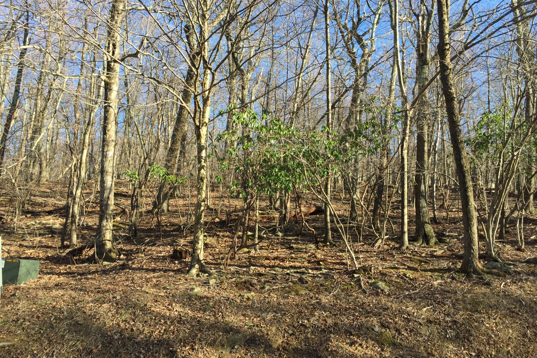 Land for Sale at Lot 58 Shamokin Springs Shamokin Springs Lot 58 Nelson, Virginia, 22967 United States