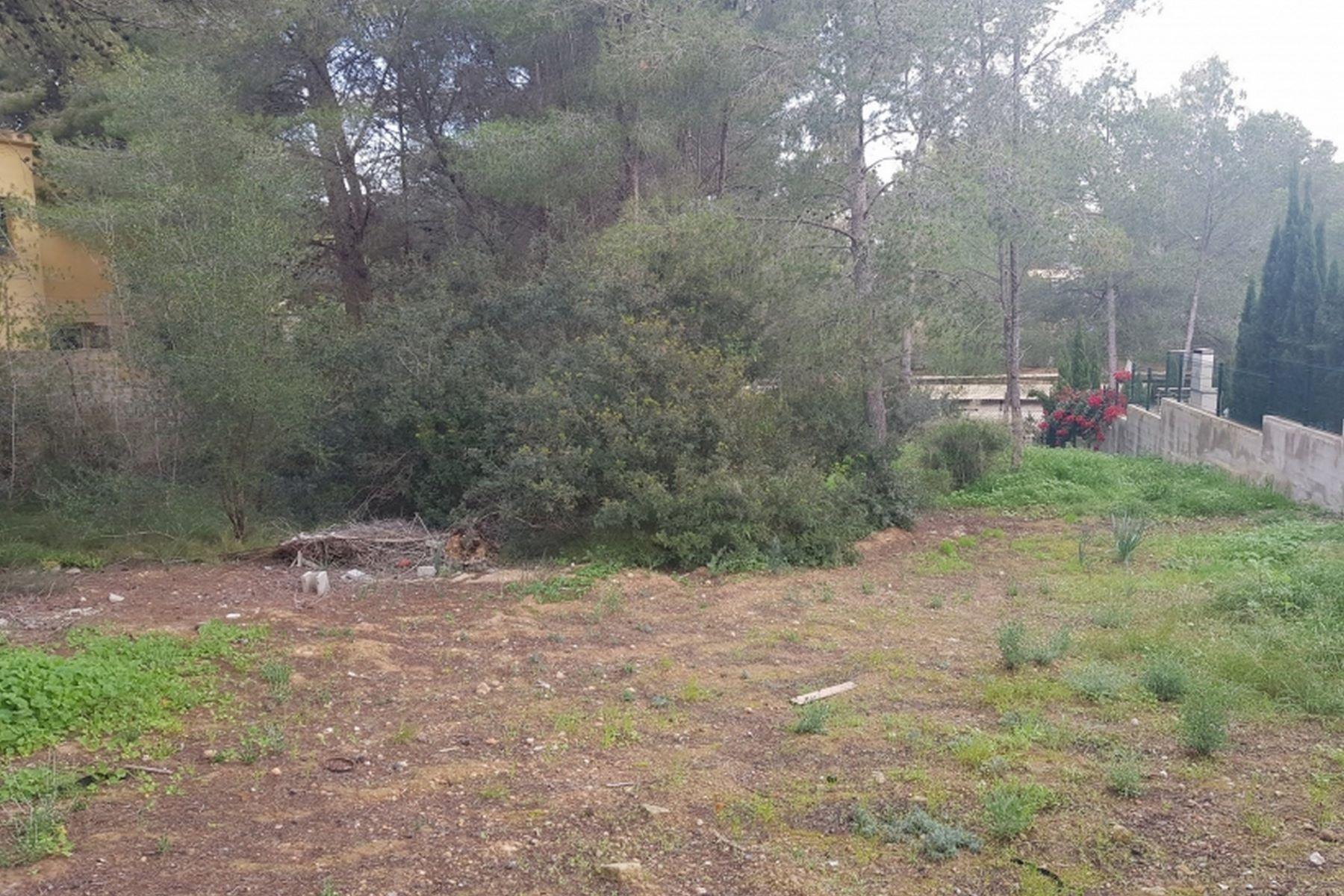 Land for Sale at Plot near the Yacht Club and the beach Nova Santa Ponsa, Mallorca Spain